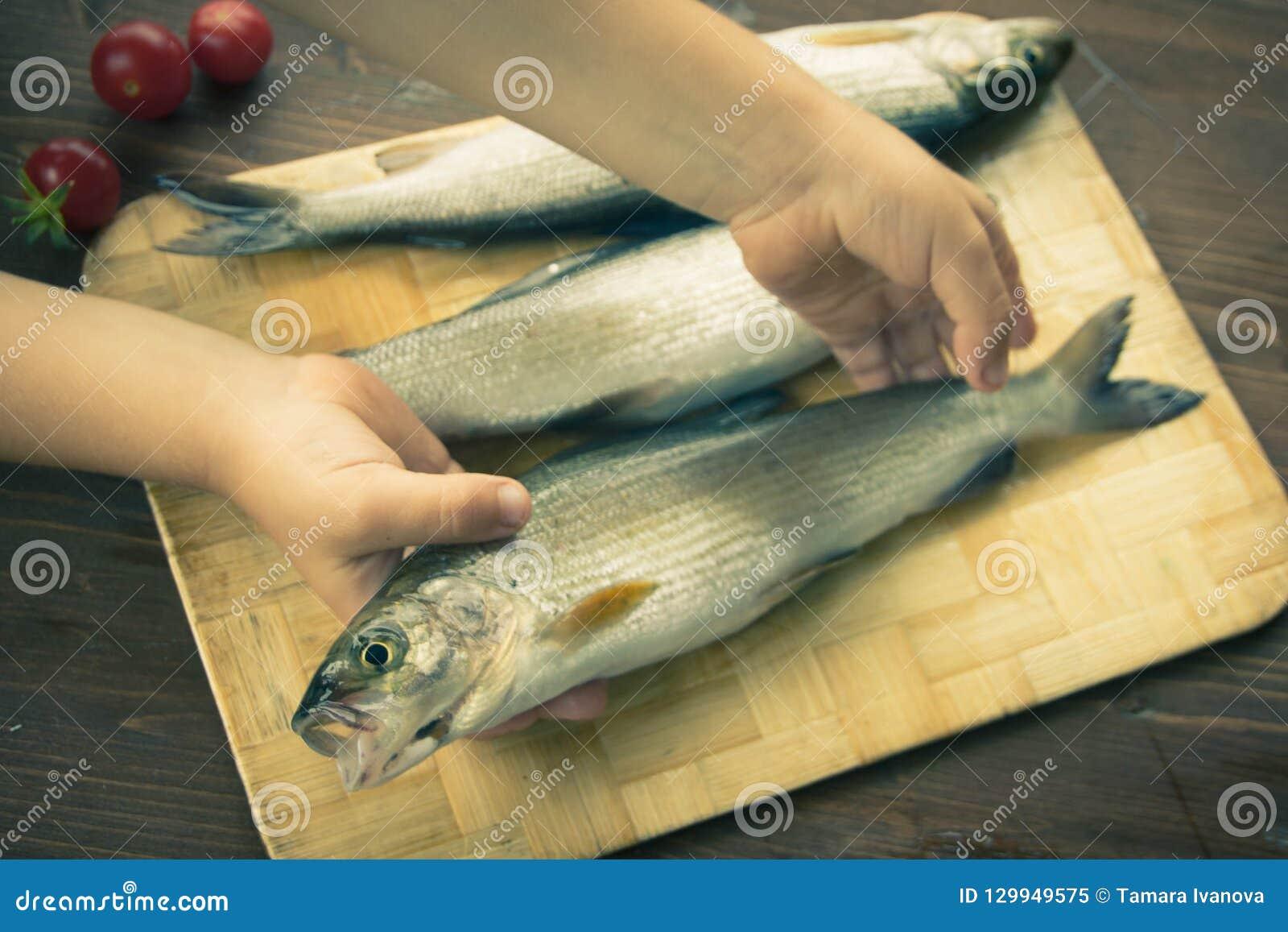 El niño pone pescados frescos en la tabla Pescados frescos