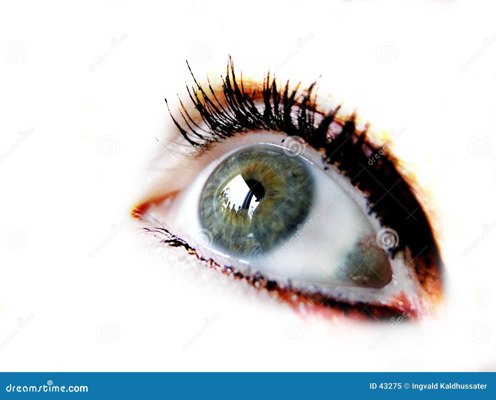 Download El ojo imagen de archivo. Imagen de ahead, reflexión, gaze - 43275