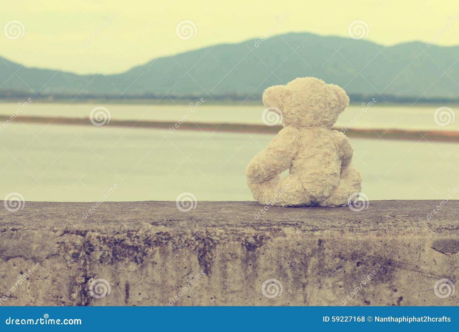 El oso de peluche se sienta esperándola Estilo de la vendimia