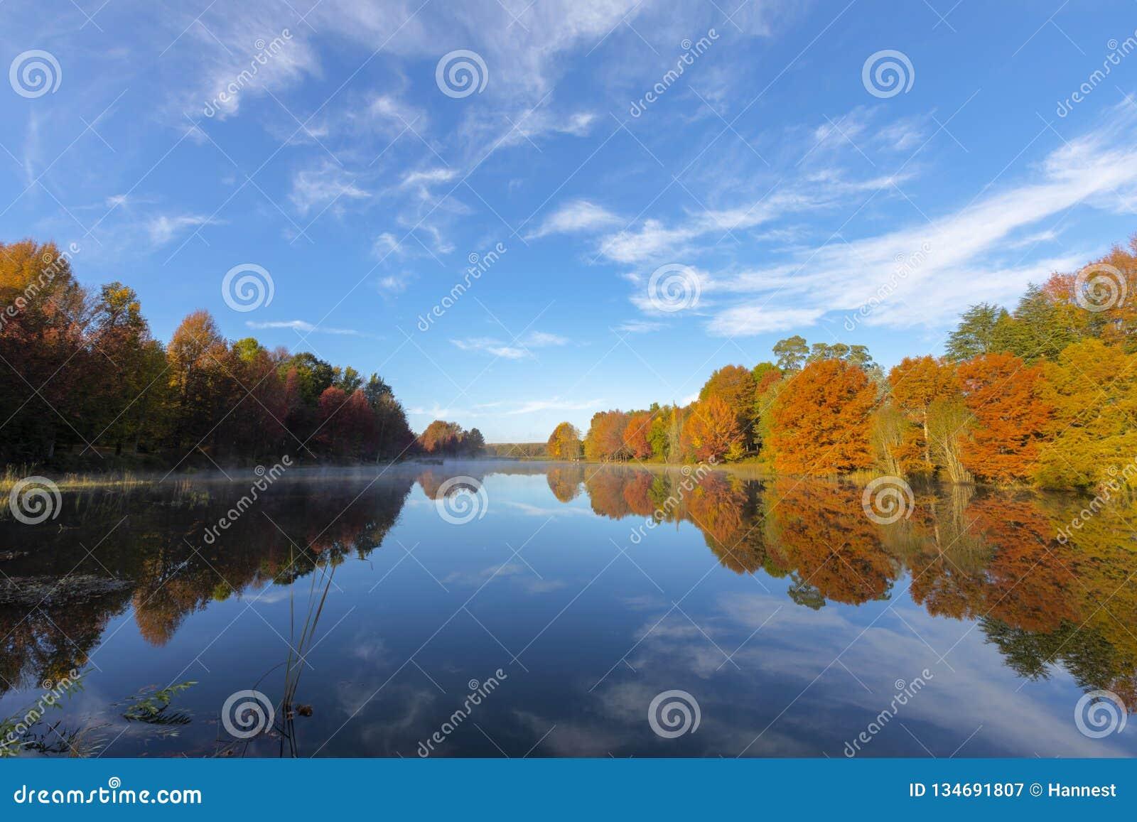 El otoño coloreó árboles refleja en el agua en el lago