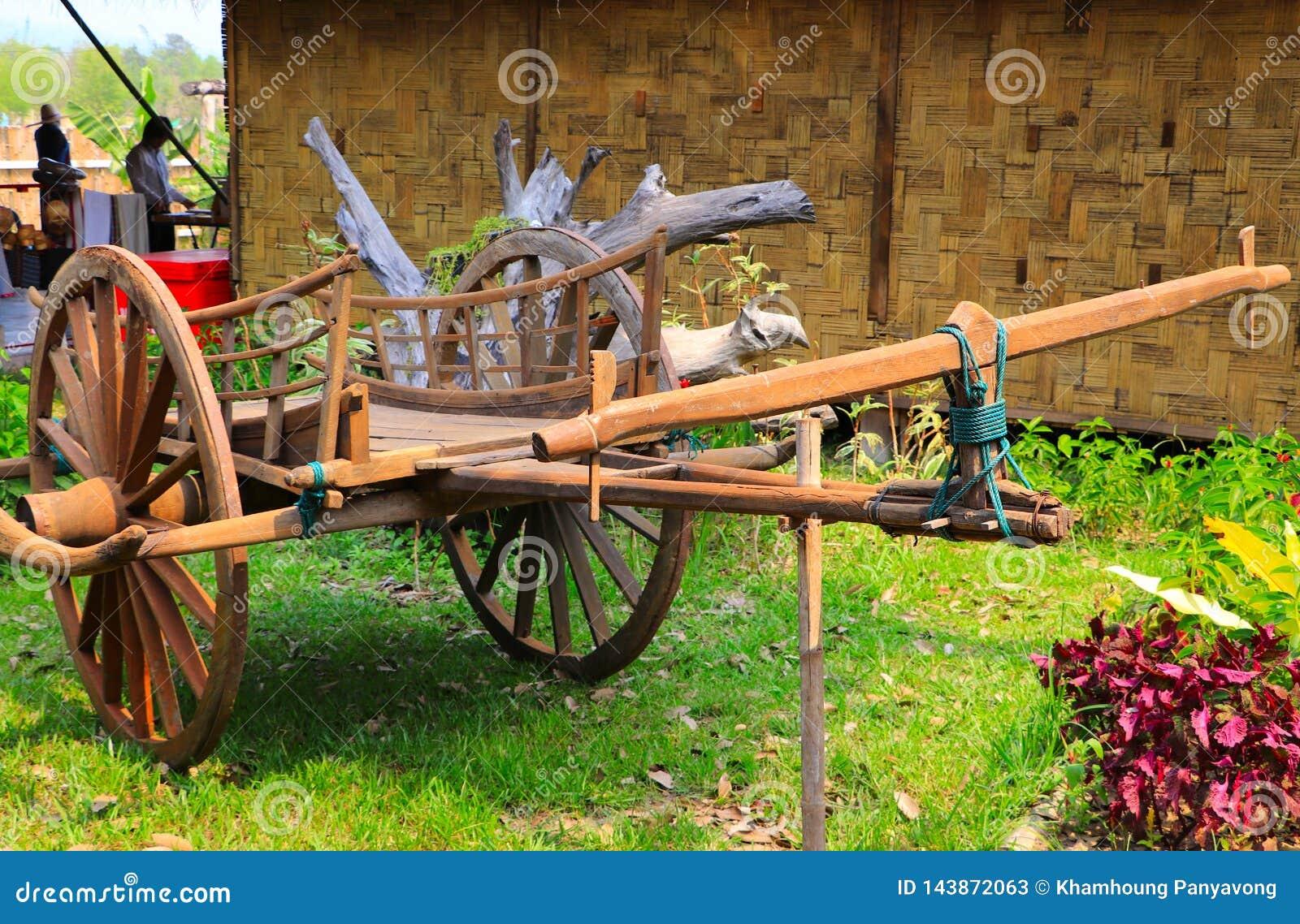 El oxcart de madera del carro del buey del vintage exhibe aire libre en el prado cultural del parque