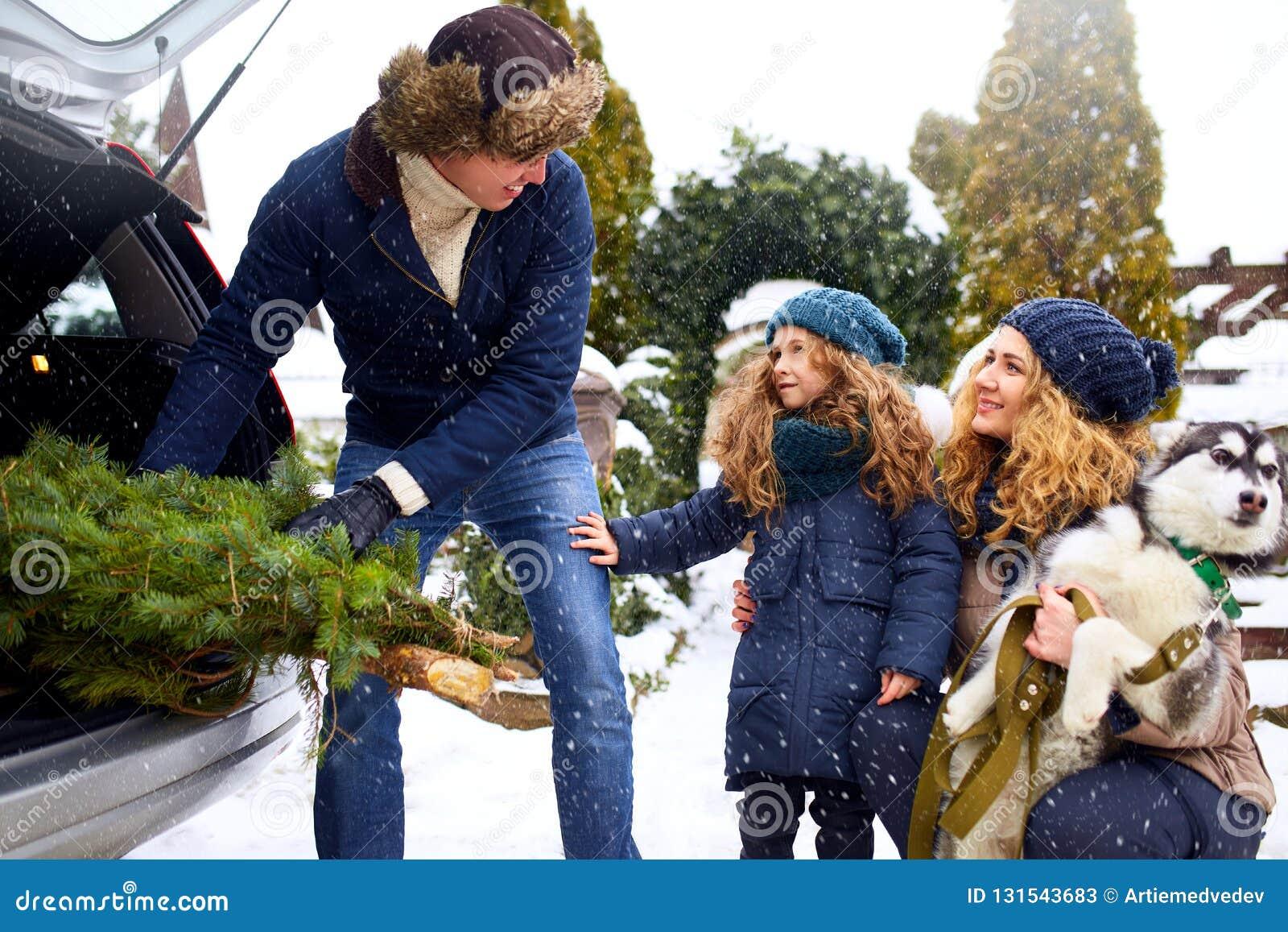 El padre trajo el árbol de navidad en el tronco grande del coche de SUV Papá de la reunión de la hija, de la madre y del perro fe