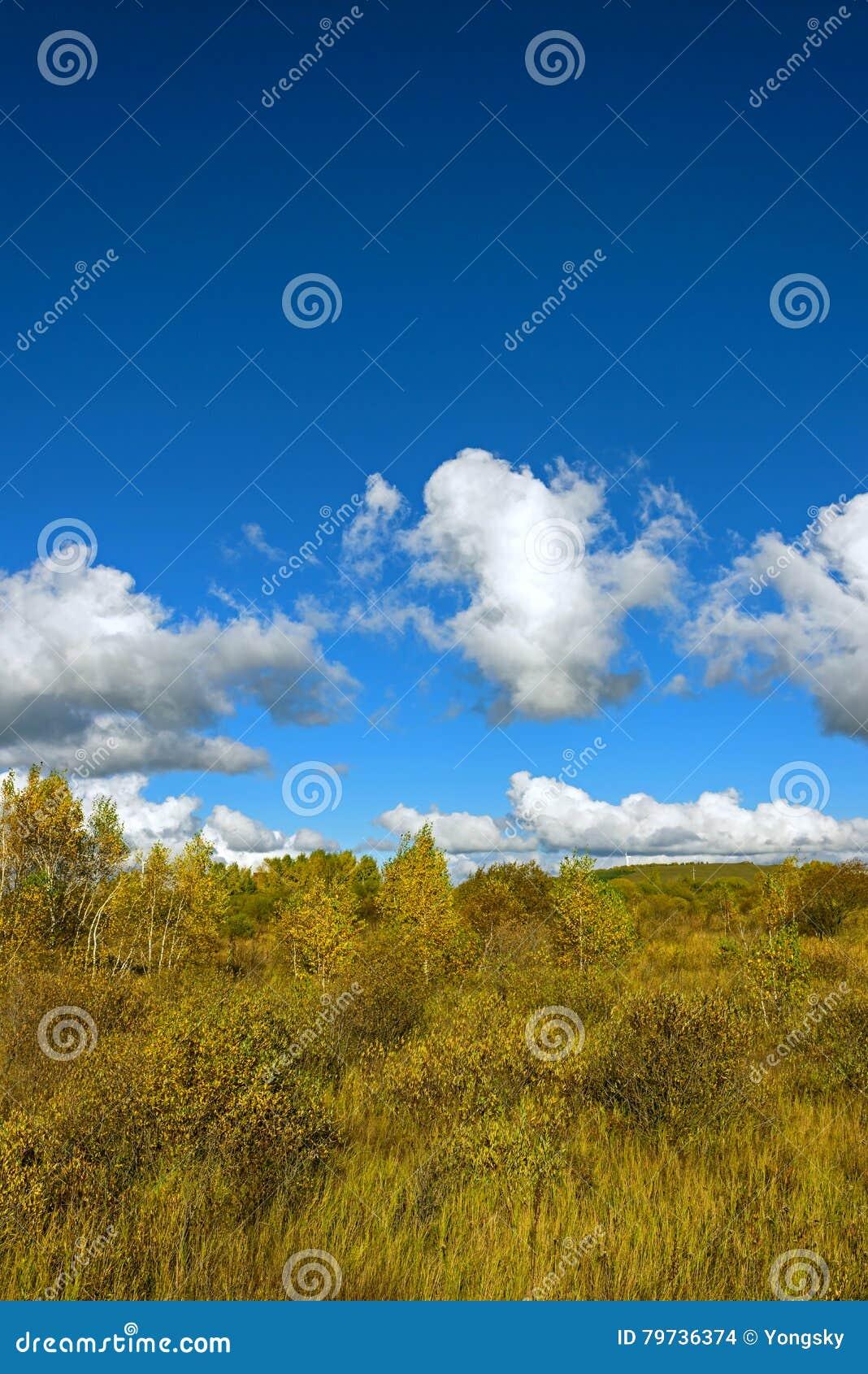 El paisaje del otoño de la pradera