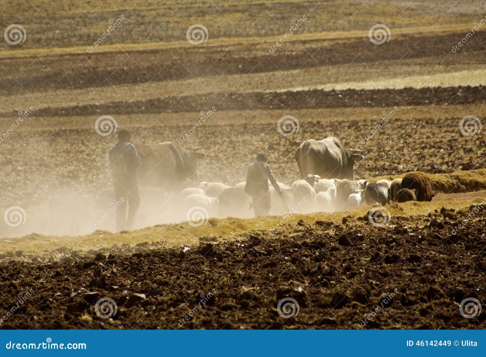 El paisaje, polvo, condujo, valle sagrado, Perú rural