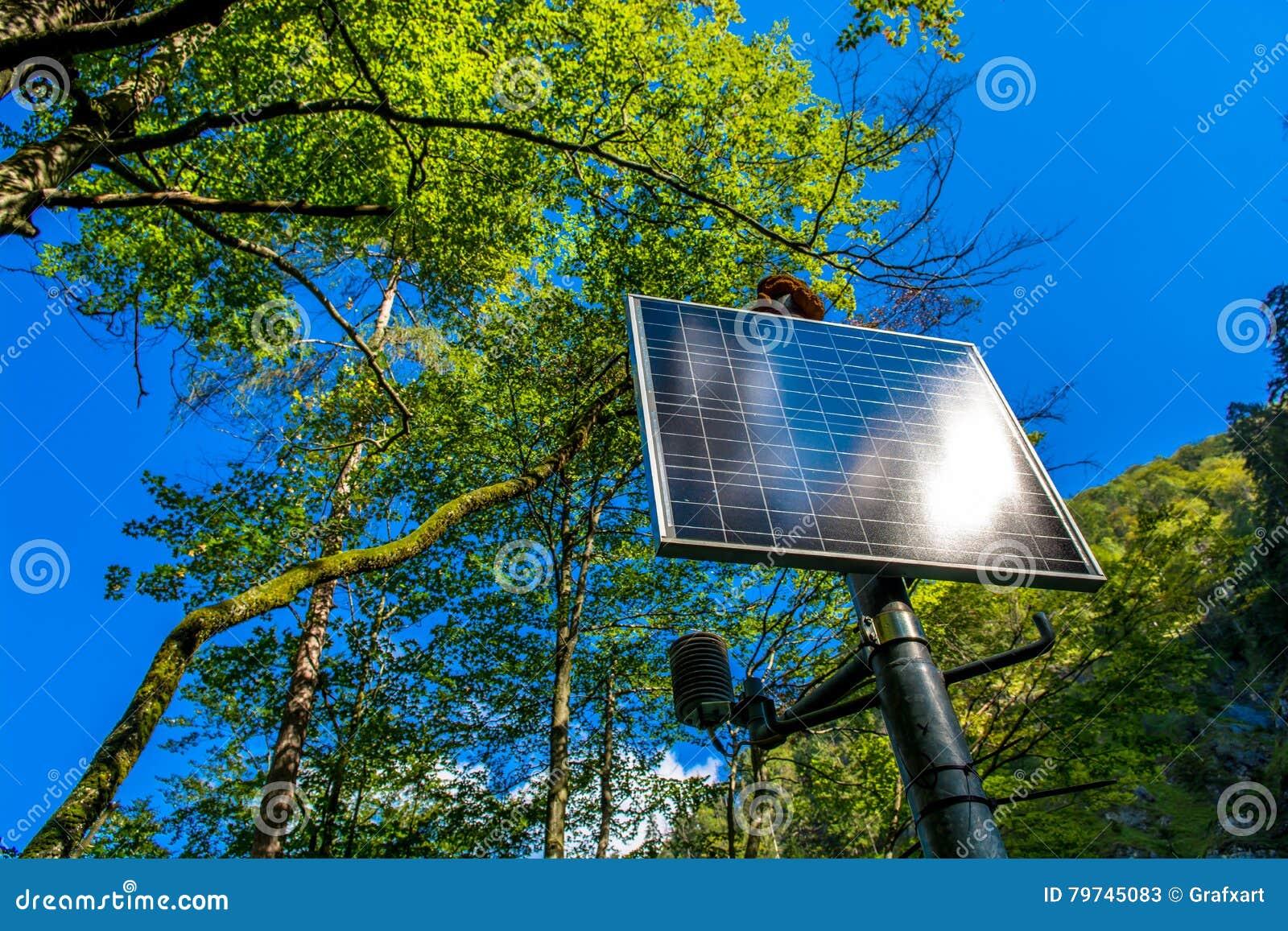 El panel solar iluminado por el sol en el bosque