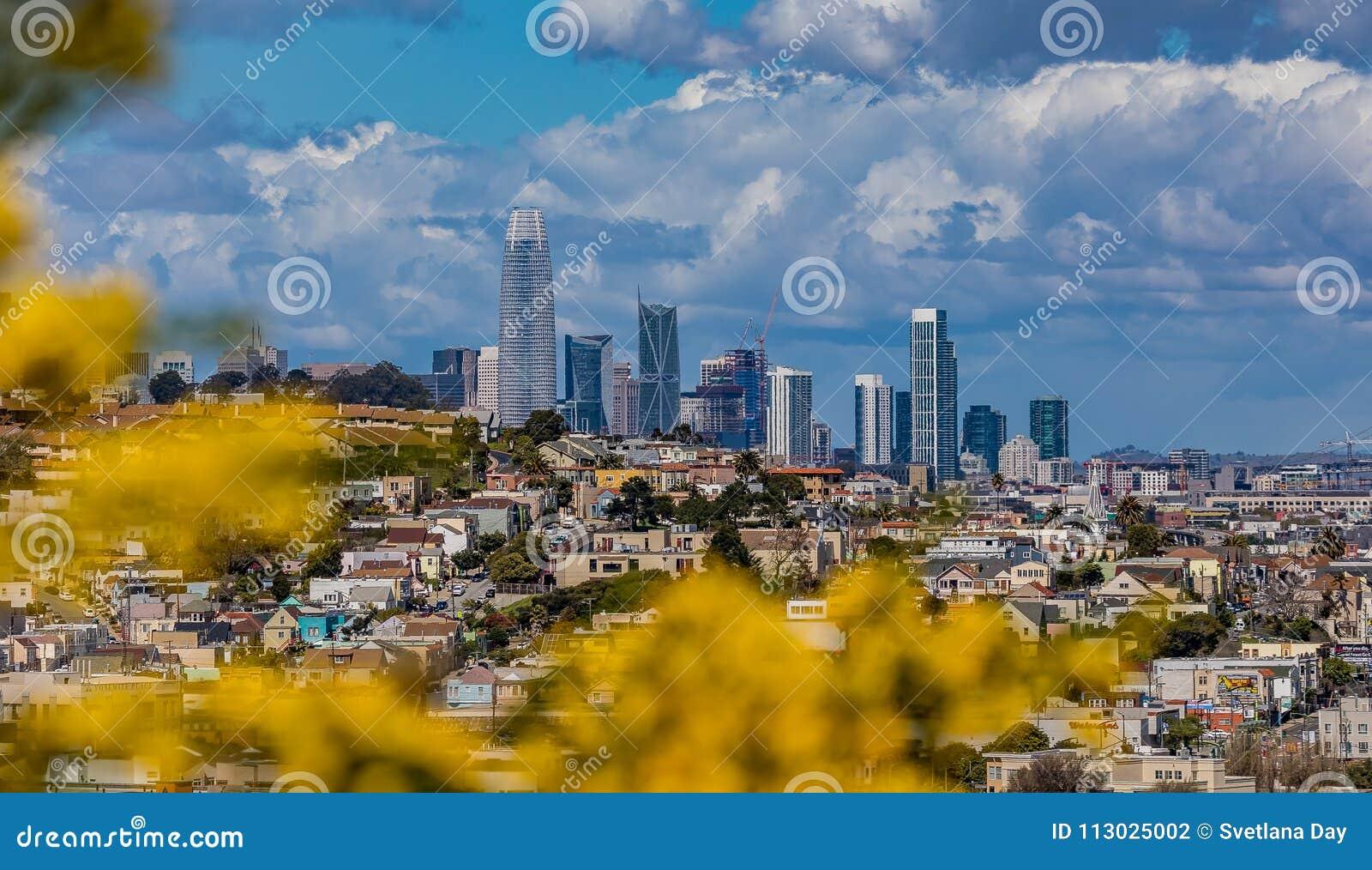 El panorama del horizonte de San Francisco con la floración florece en la delantera