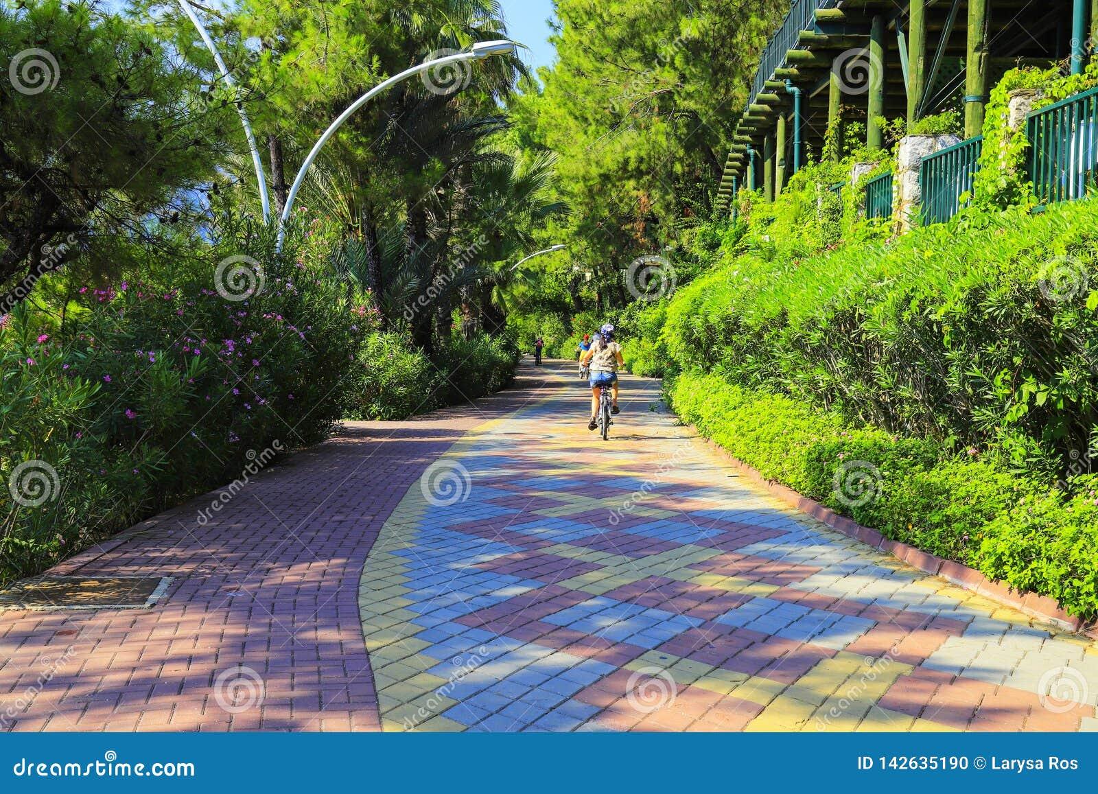 El pequeño niño monta una bicicleta a lo largo de una trayectoria del ciclo de tejas de pavimentación multicoloras entre árboles