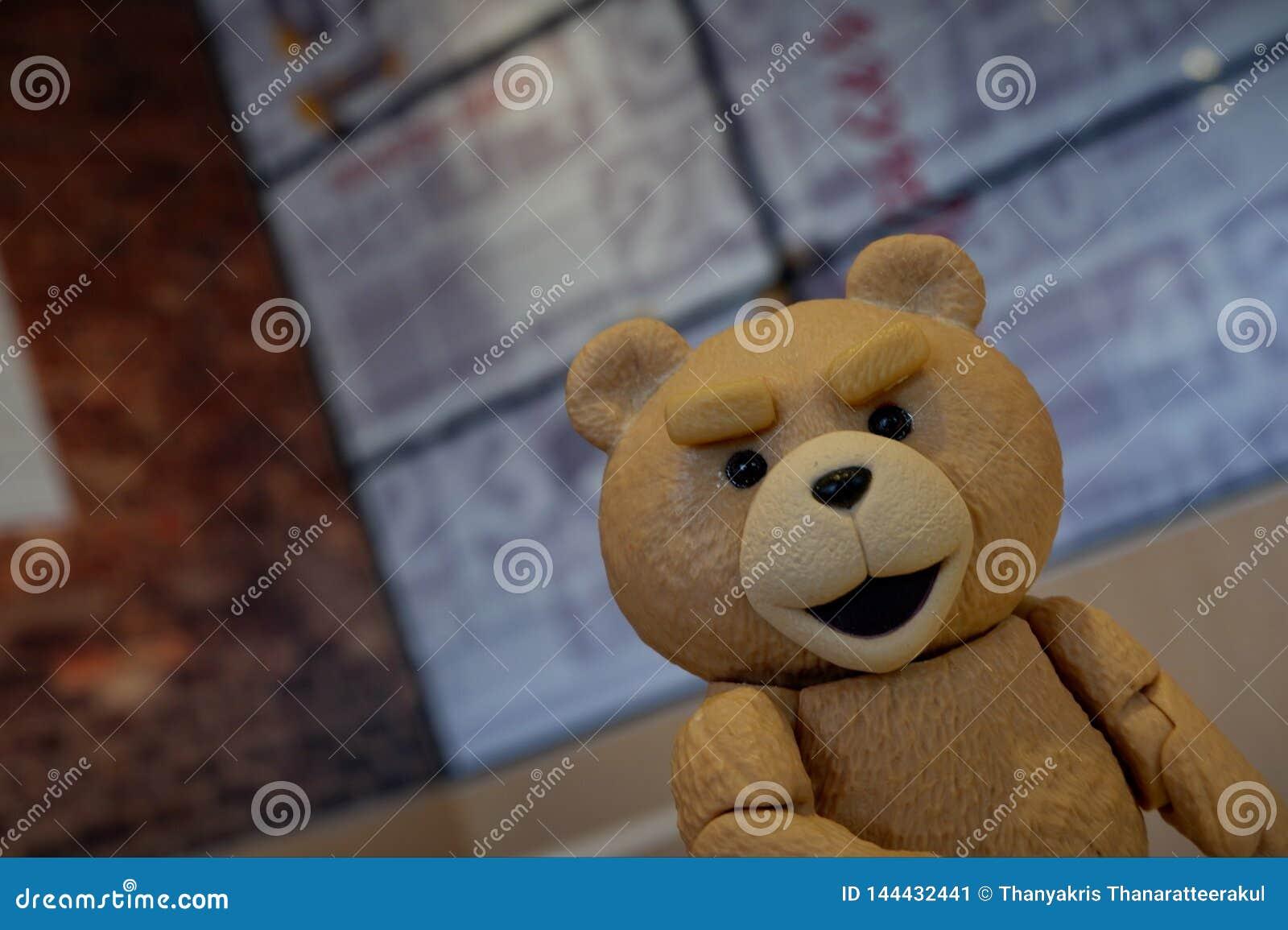 El pequeño oso está mirando su cara