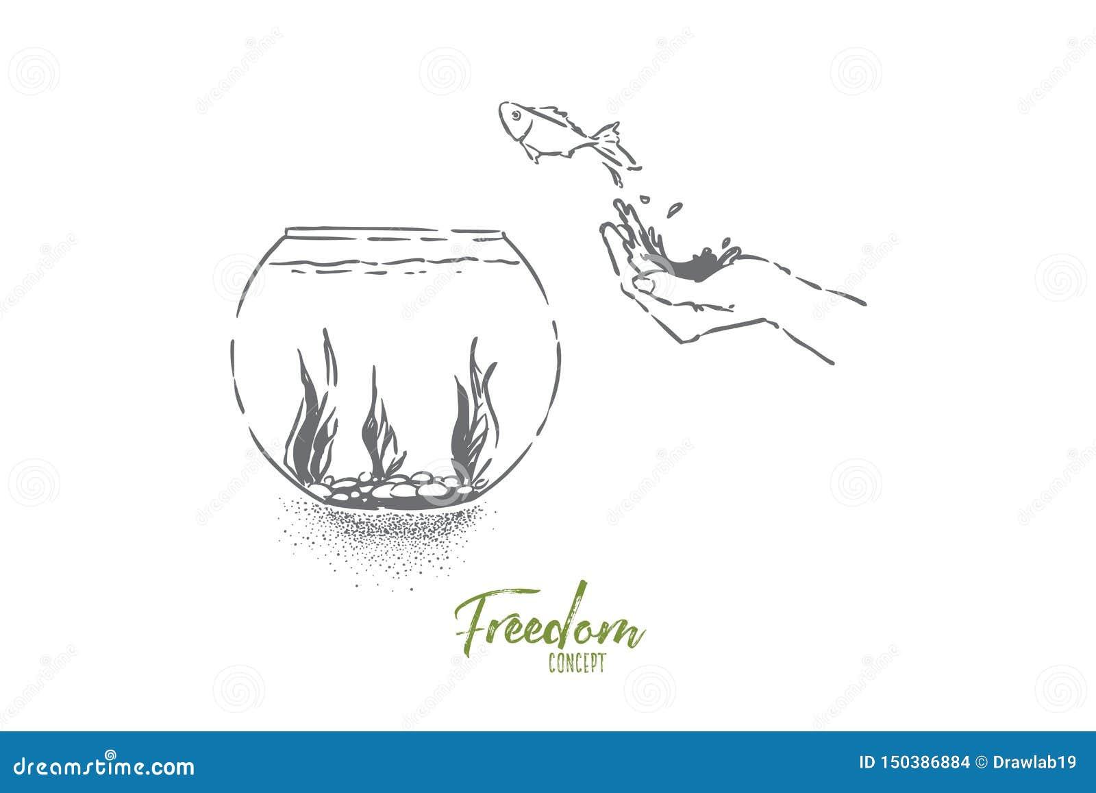 El pequeño pez de colores que saltaba en el fishbowl, mano dejó pescados ir, salto nacional del animal doméstico en el acuario de