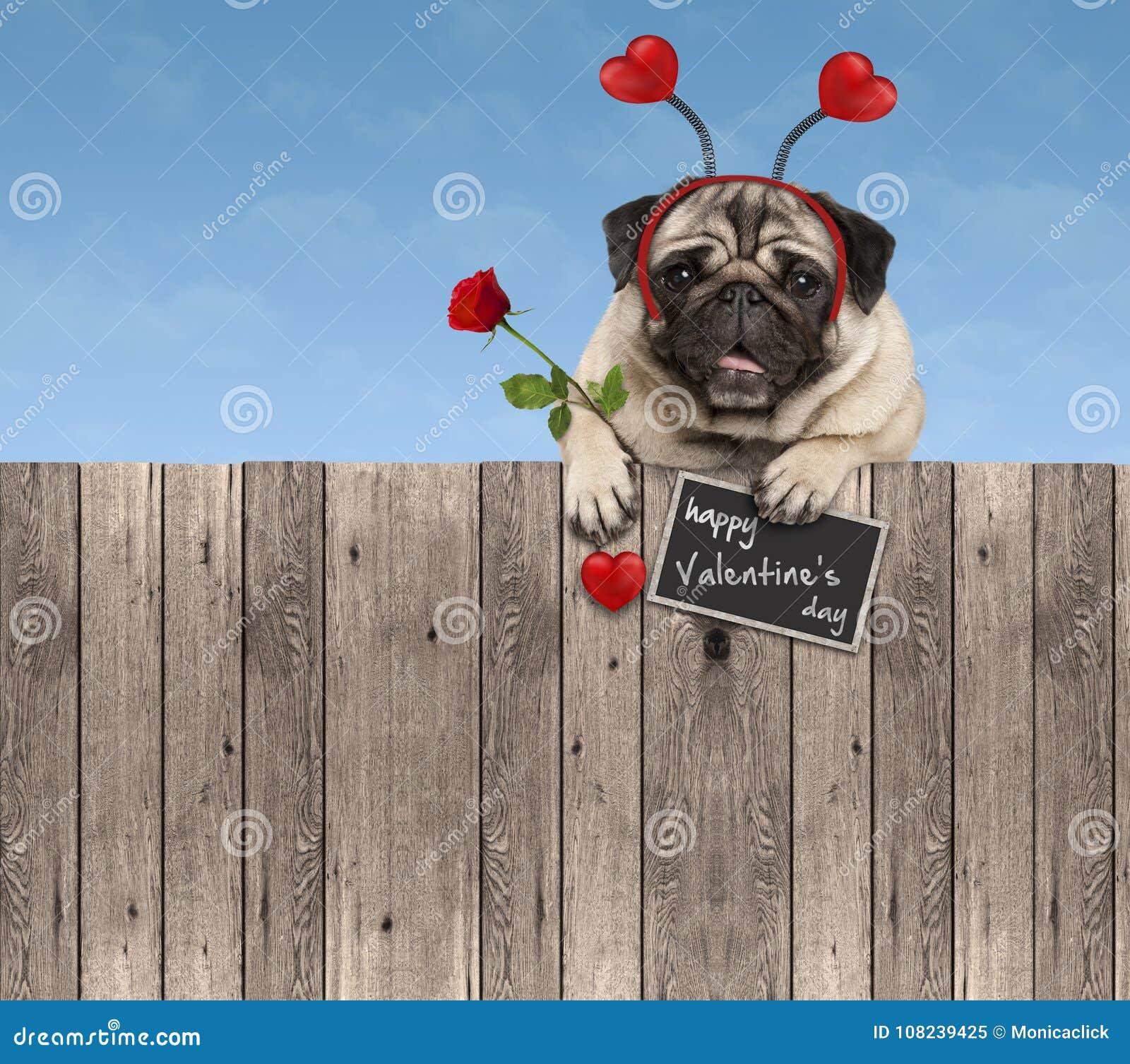 El perro del barro amasado del día de tarjetas del día de San Valentín con la diadema de los corazones y subió, colgando en la ce