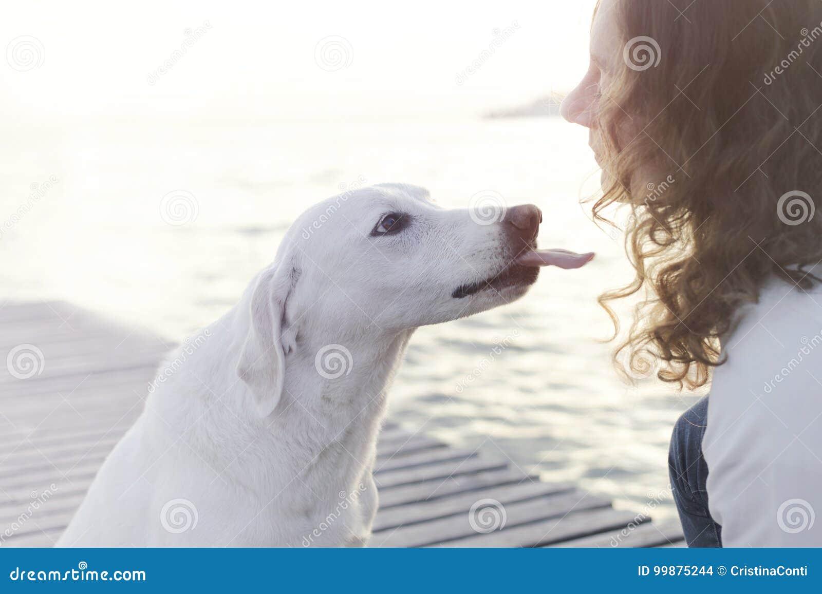 El perro feliz intenta dar un beso a su dueño