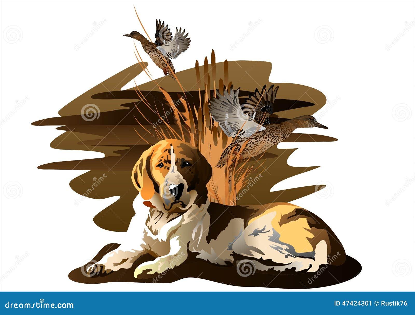 El perro y el pato