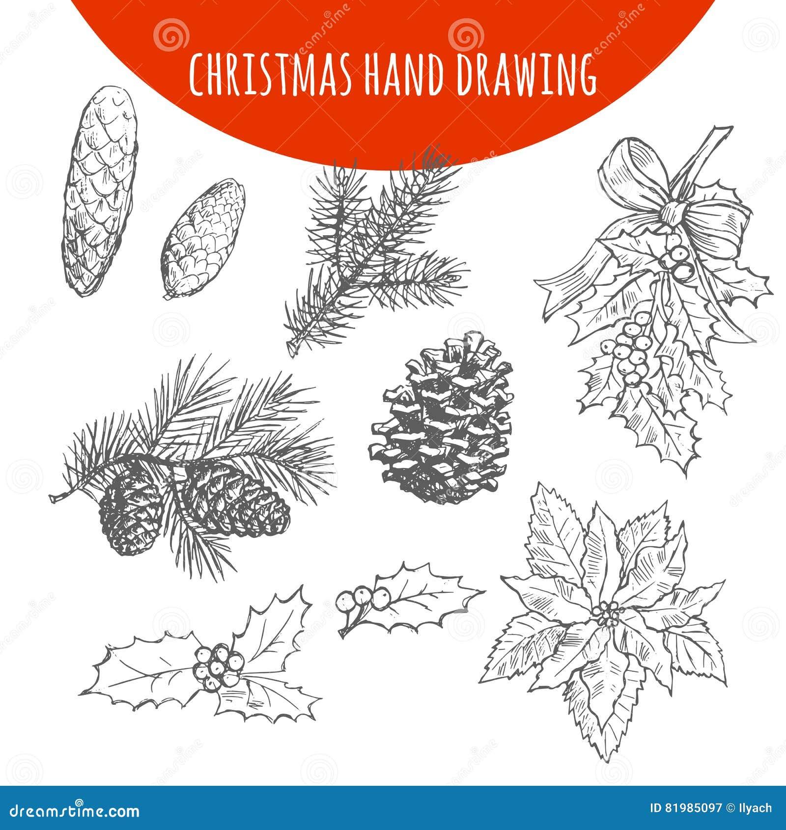 El Pino De La Navidad Las Ramas De árbol De Abeto Y Los Conos