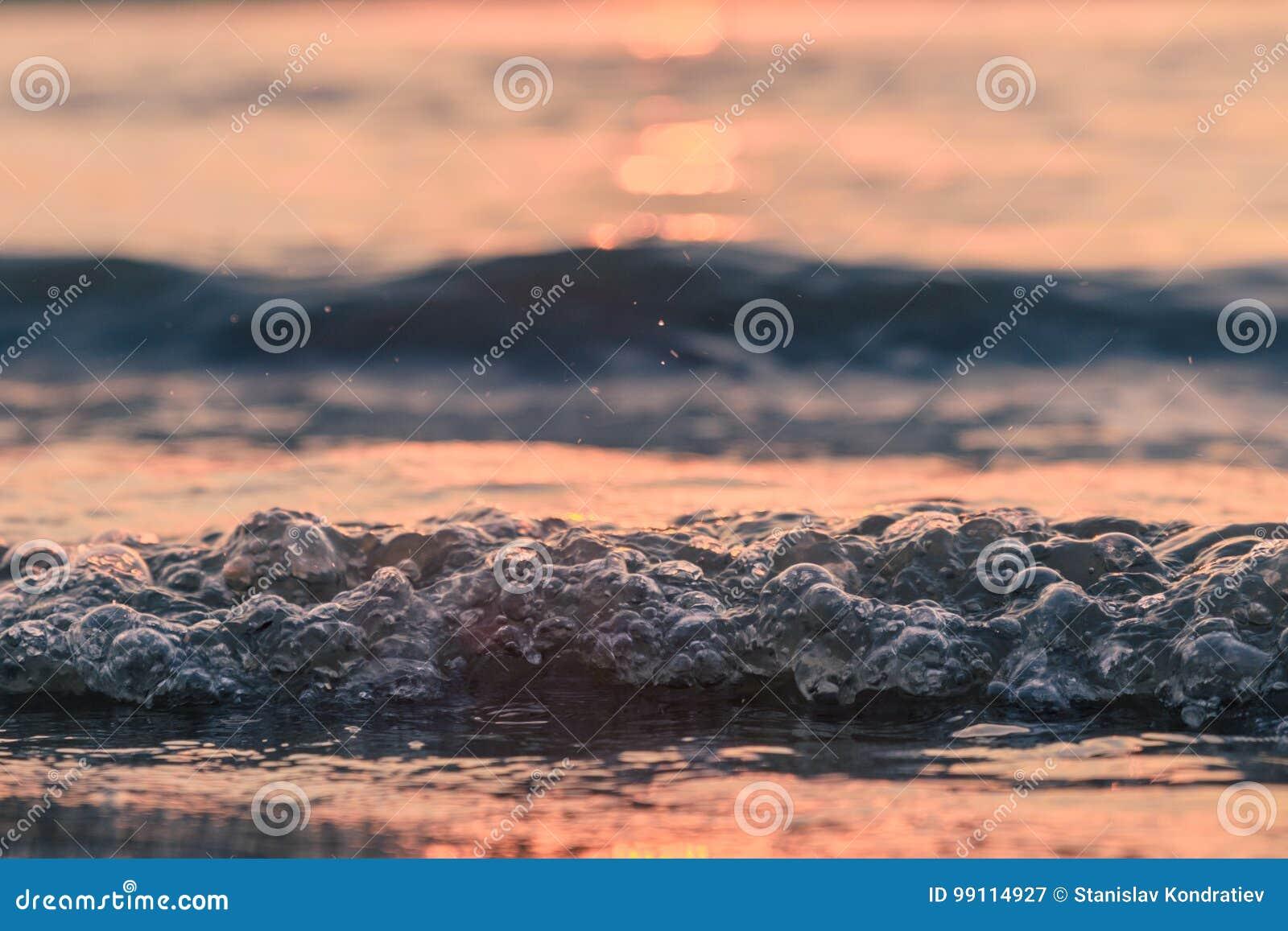 El primer agita en la puesta del sol