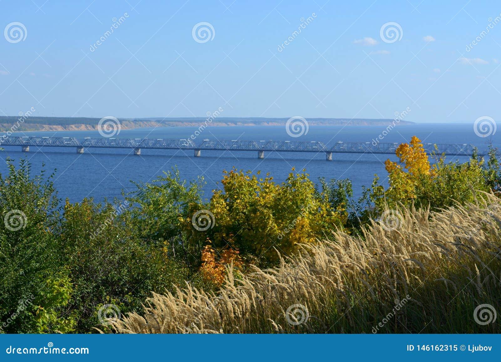El puente sobre el río Volga en el día soleado de septiembre Visión desde el top con los árboles y los cereales en el primero pla