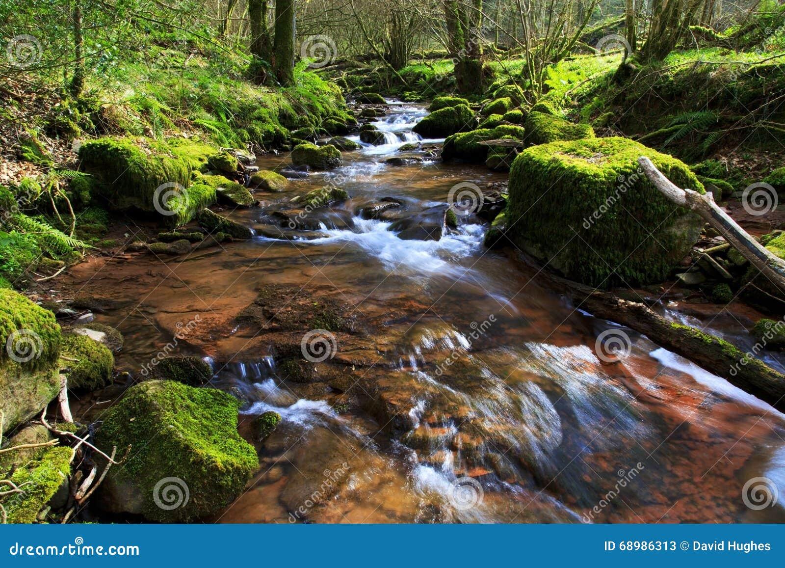 El río Ennig; en la reserva de naturaleza de Pwll y Wrach