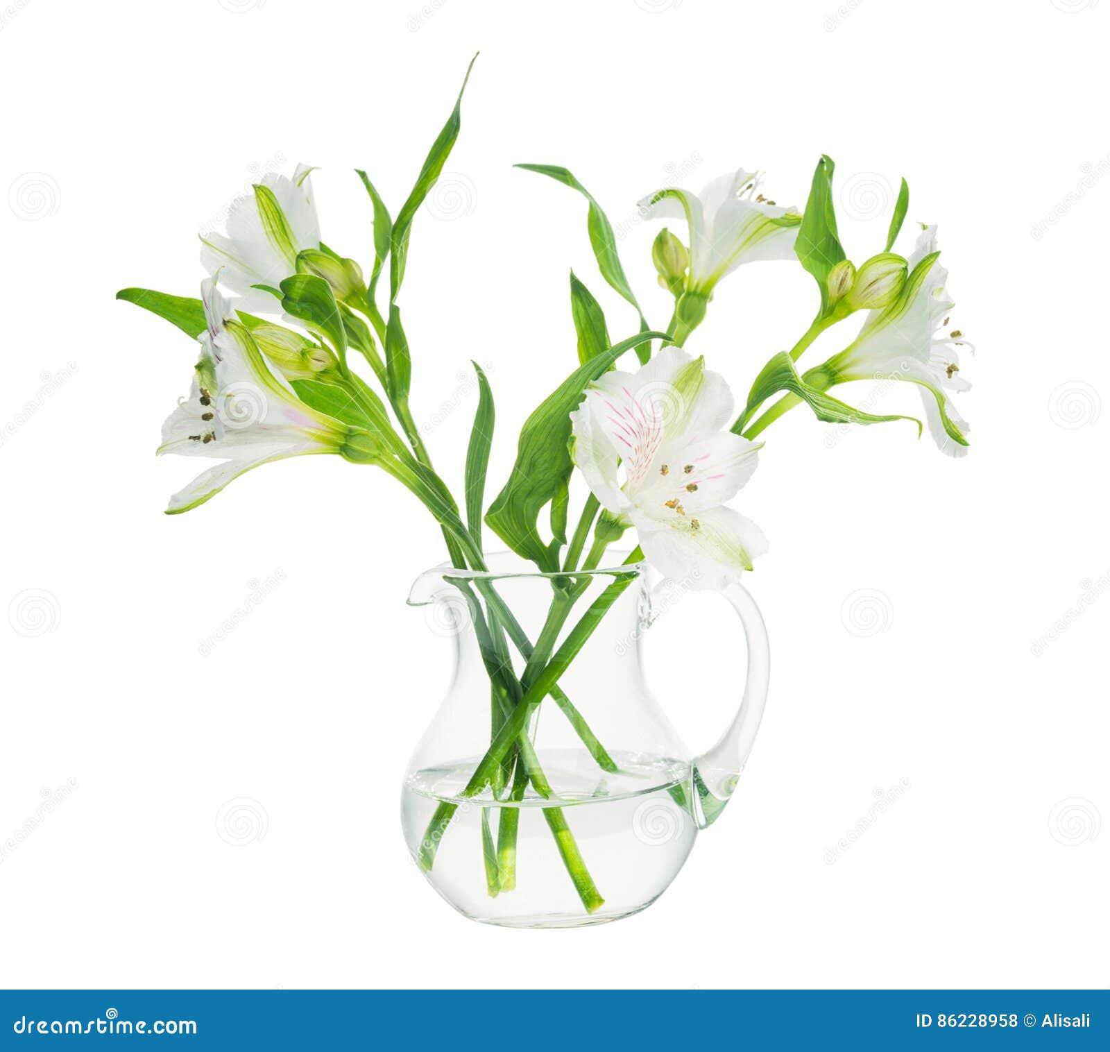El ramo de alstroemeria florece en el florero transparente aislado
