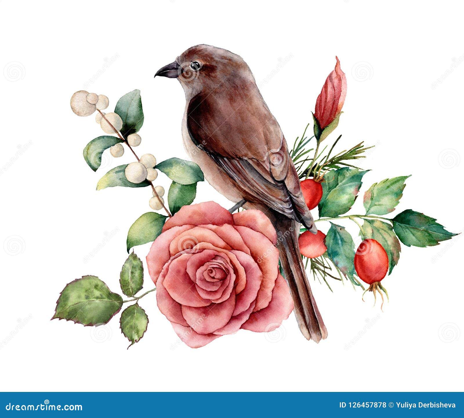 El ramo de la acuarela con el pájaro y subió Ejemplo floral pintado a mano con la flor rosada, dogrose, snowberries, hojas