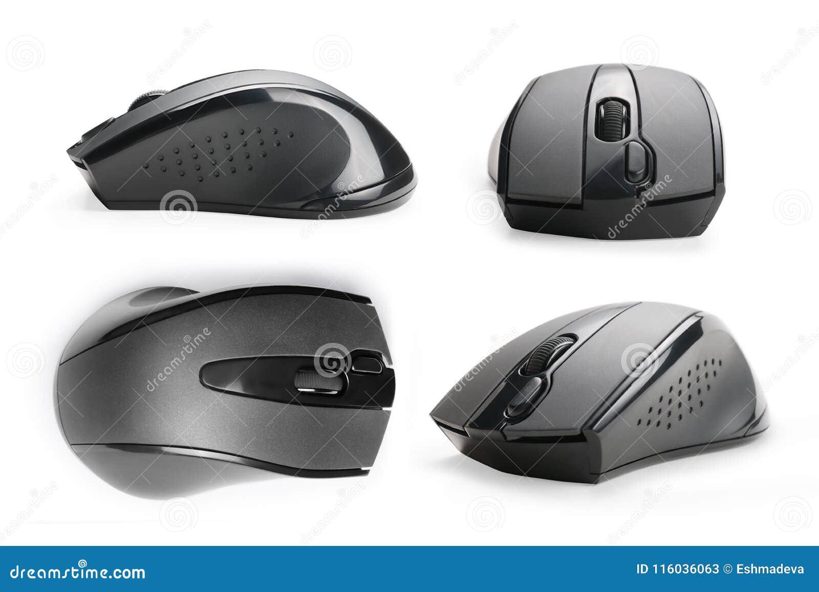 El ratón del ordenador ve la colección aislada con la trayectoria de recortes