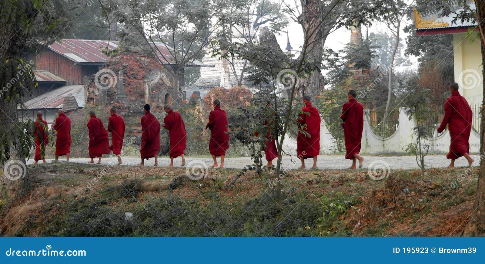 El recorrer de once monjes. Myanmar (Birmania)
