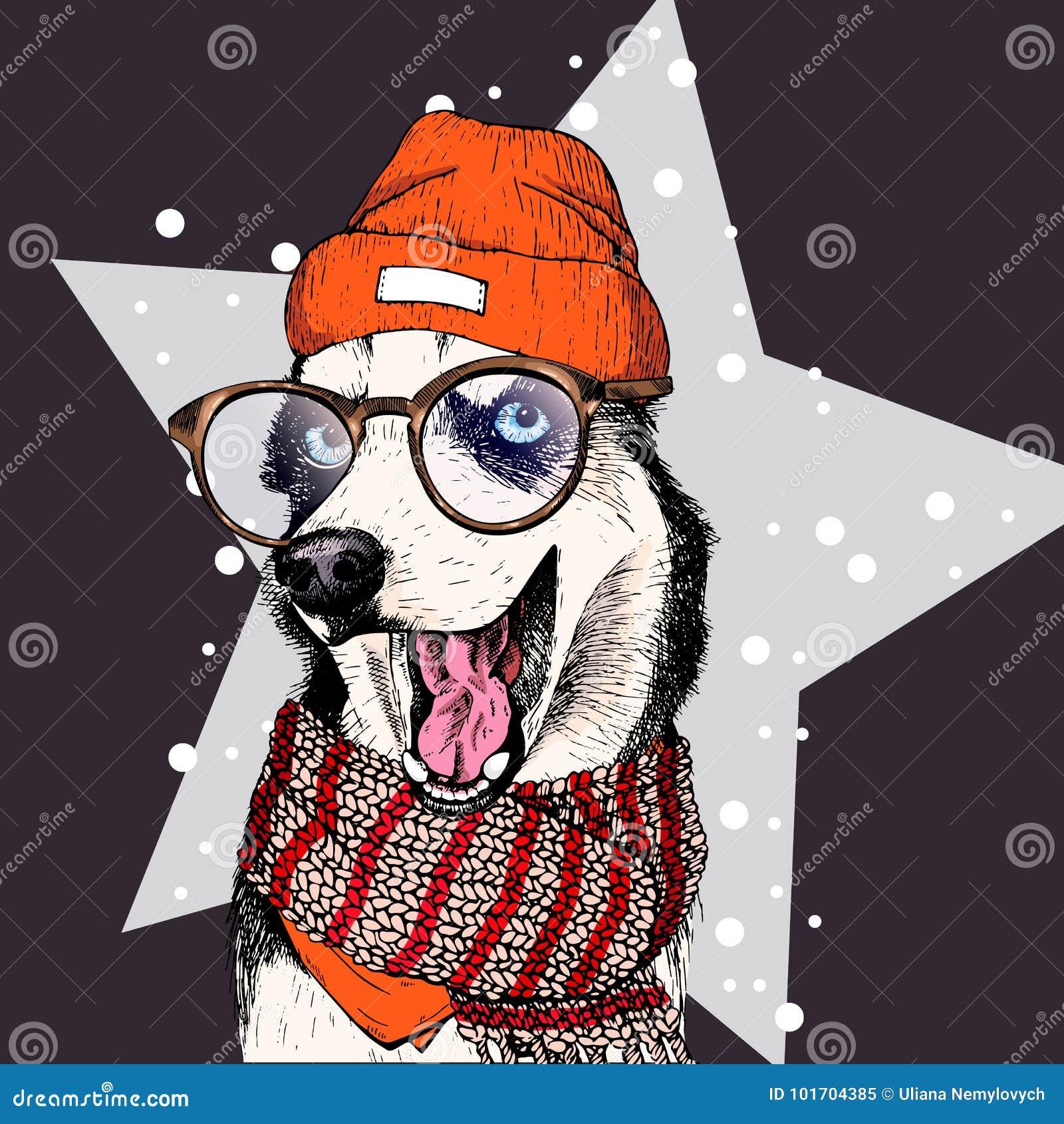 El Retrato Del Vector Del Perro Del Husky Siberiano Lleva La Gorrita ...