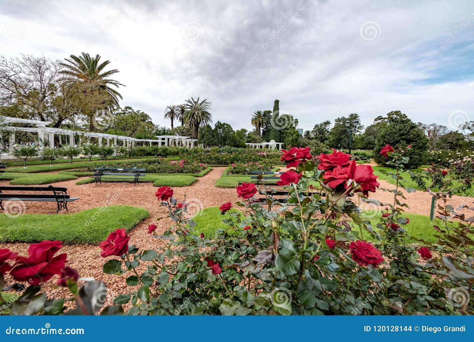 El Rosedal Rose Park at Bosques de Palermo - Buenos Aires, Argentina