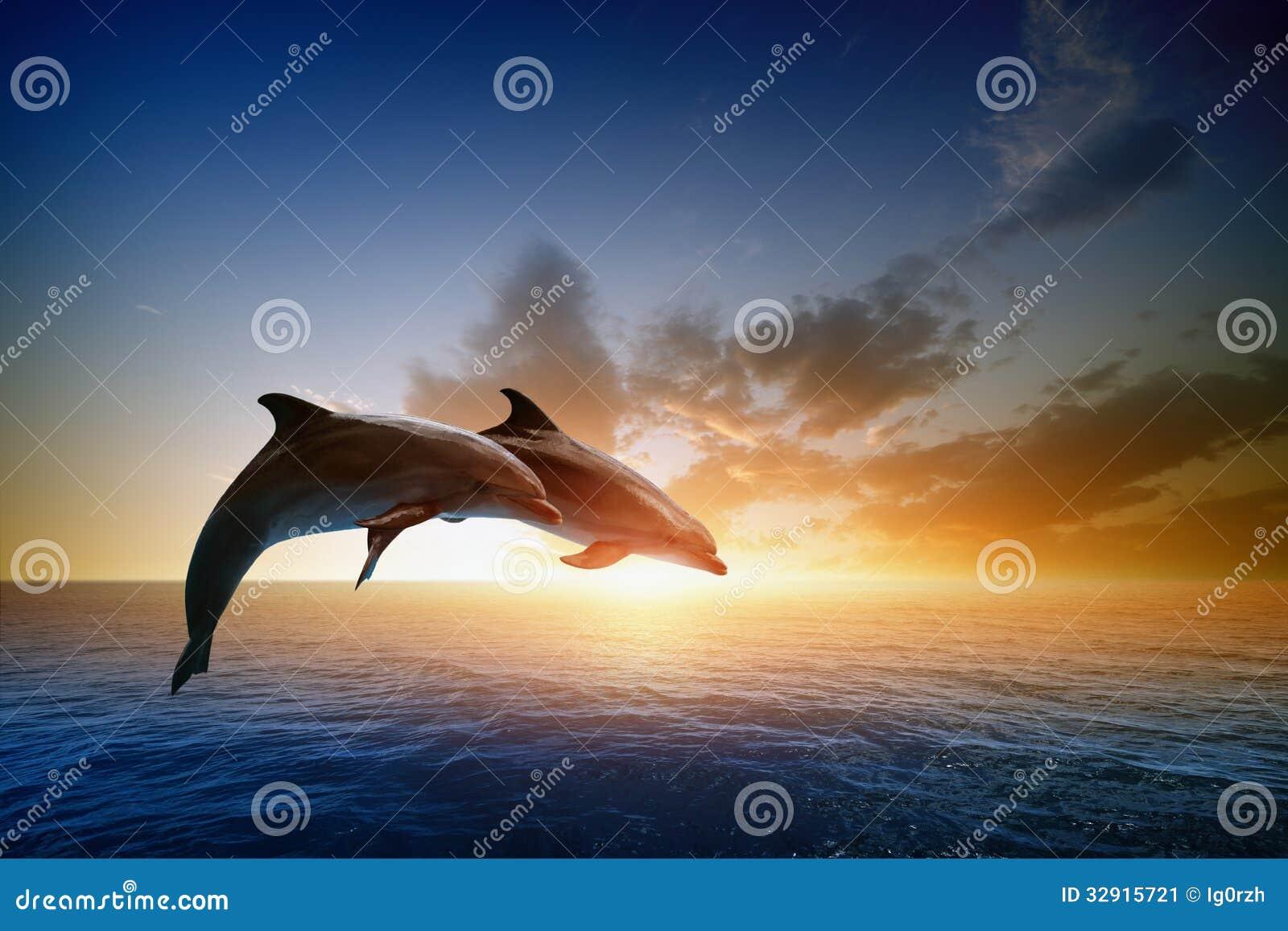 El salto de los delfínes