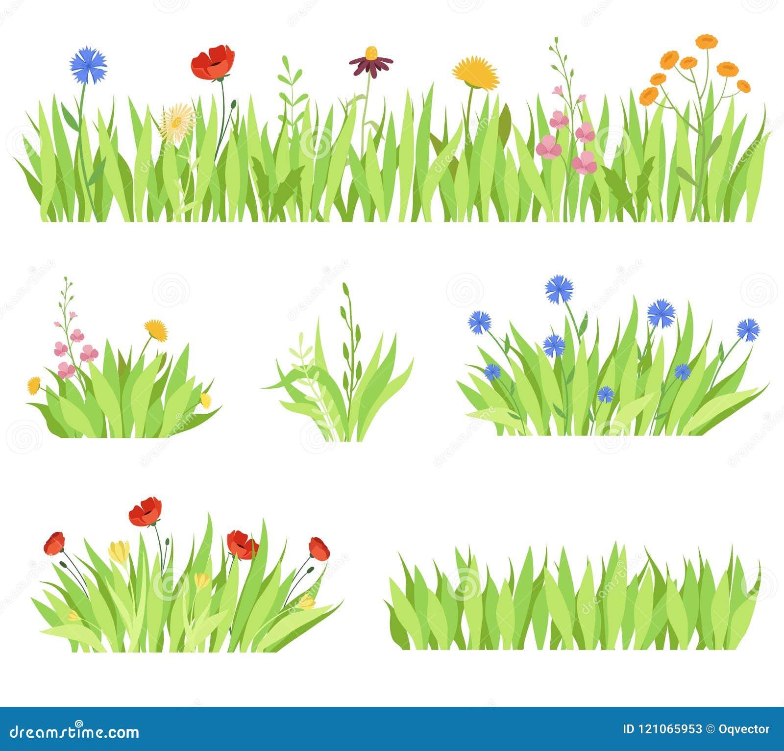 El sistema de diverso jardín natural florece en la hierba Camas de flor frescas del jardín en un fondo blanco Ilustración del vec