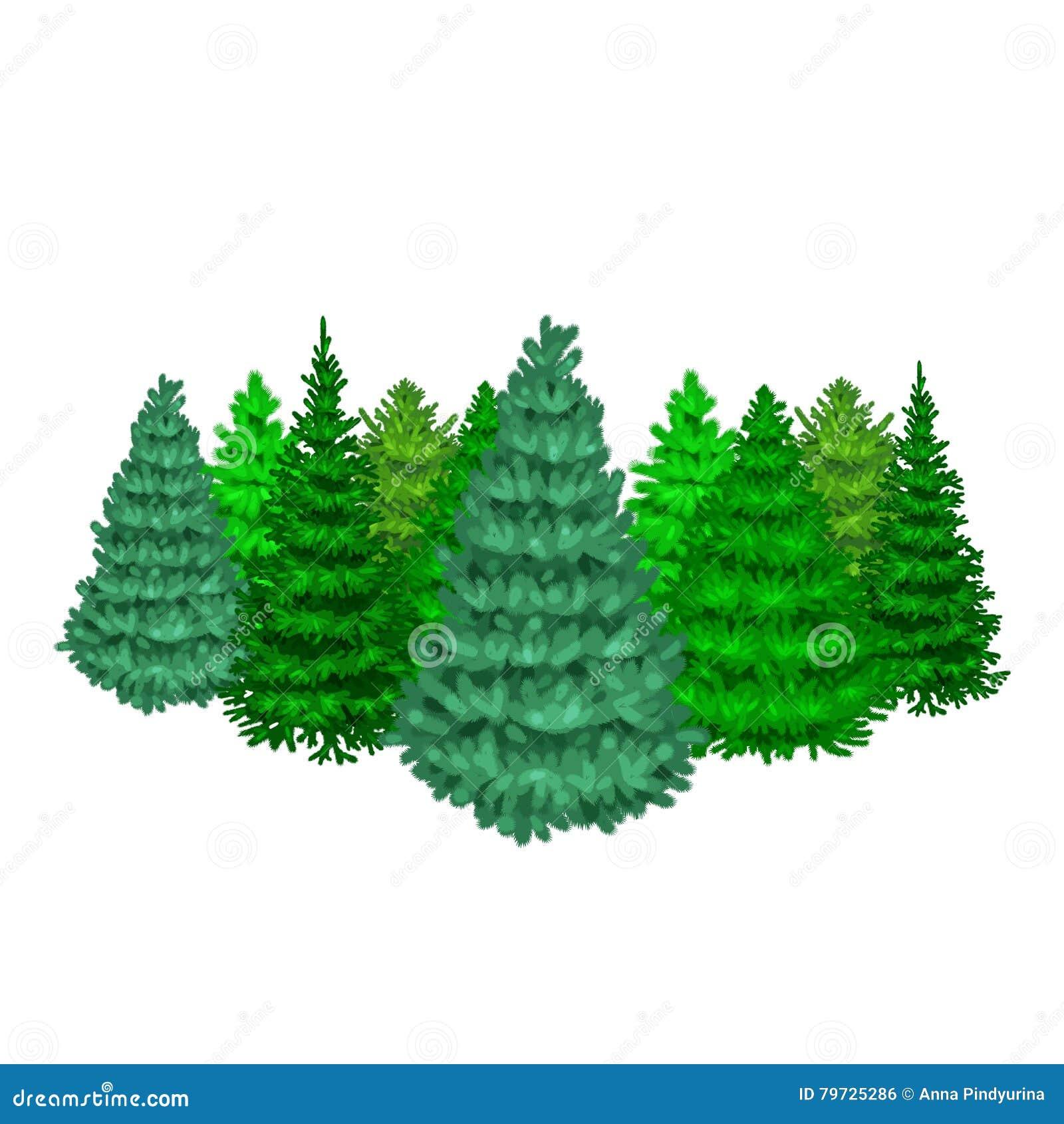 El sistema del árbol del vector de la Navidad le gusta la picea azul del abeto o del pino para la celebración del Año Nuevo sin l