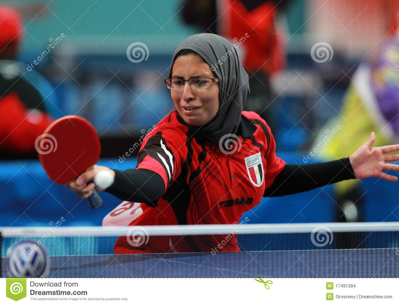 2011 World Table Tennis Championships – Mixed Doubles