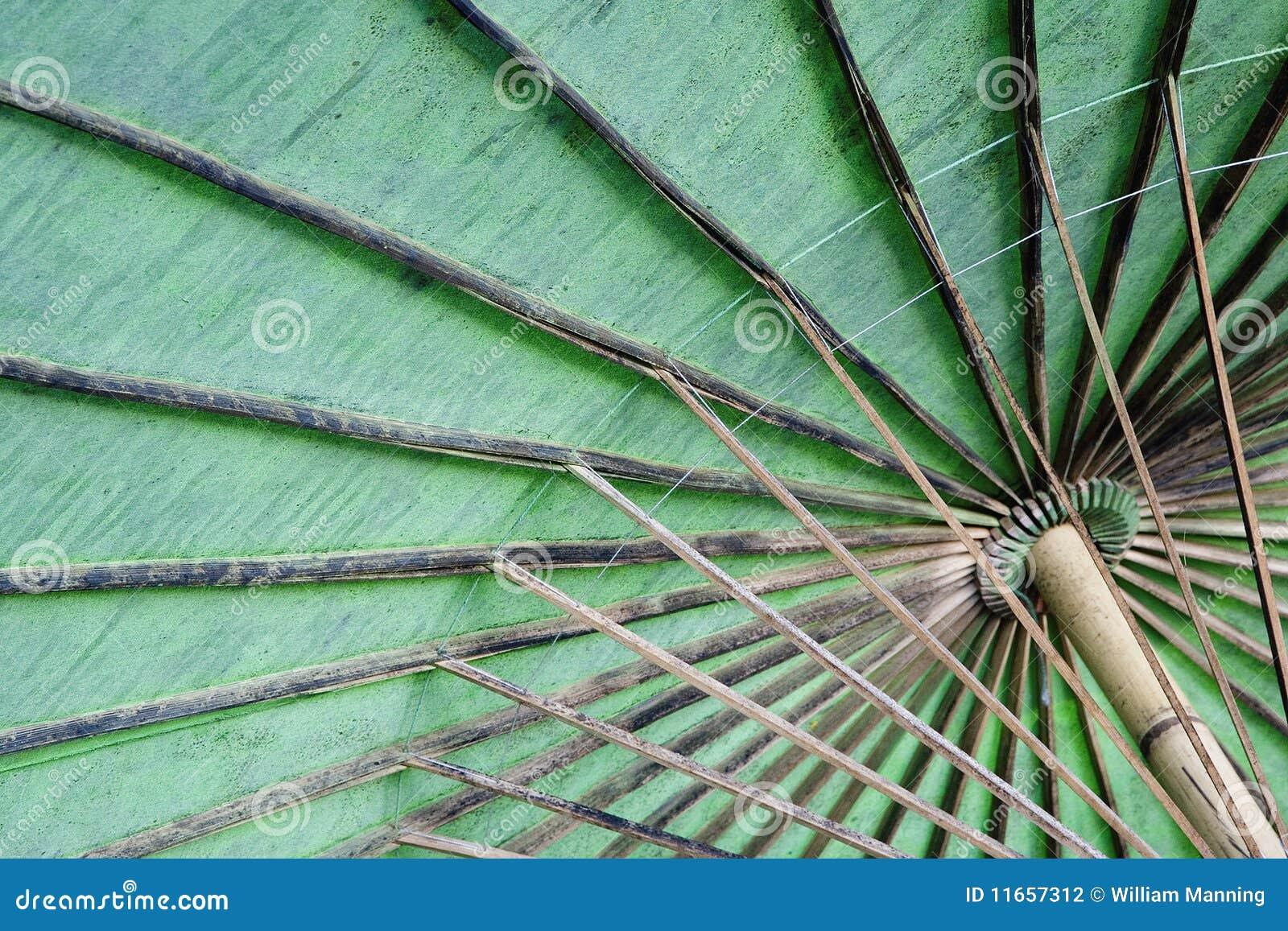El superficie inferior de un paraguas del algodón