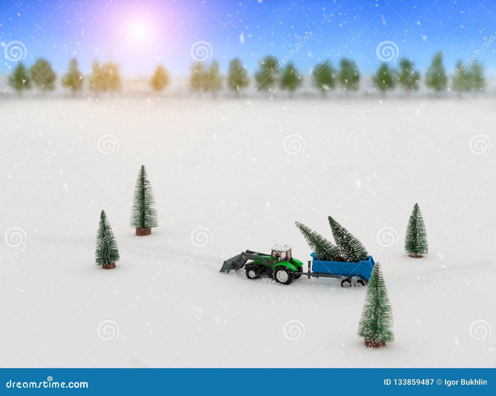 El tractor del juguete con un remolque lleva los árboles de navidad durante las nevadas, paseos a través de la nieve en el medio