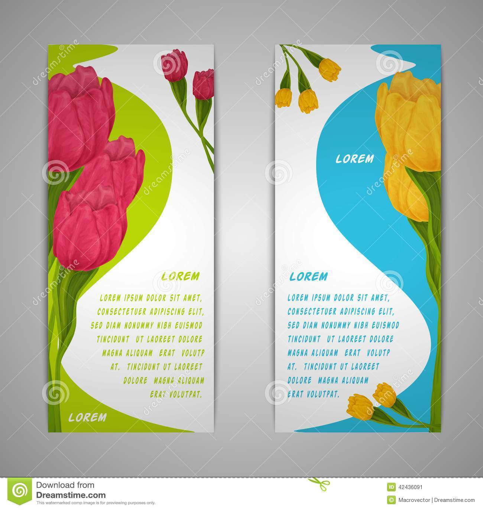 El tulipán florece banderas
