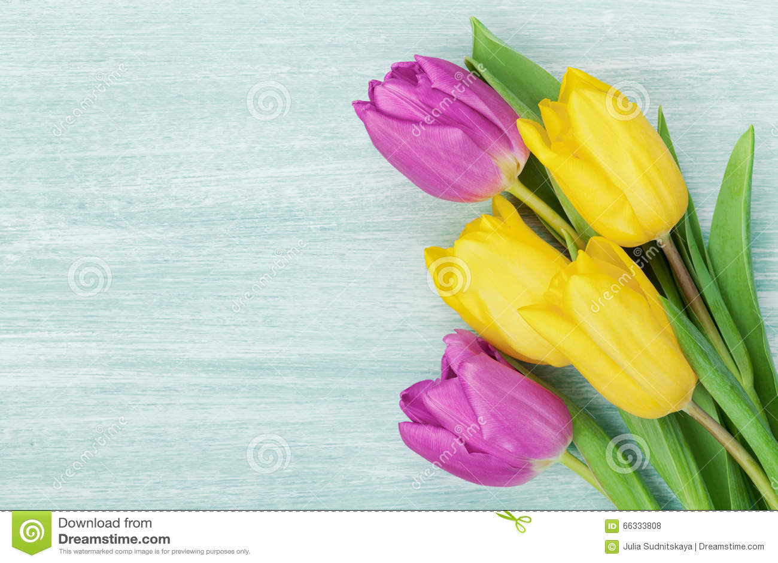 El tulipán florece en la tabla rústica para el 8 de marzo, el día para mujer internacional, el día del cumpleaños o de madres, ta
