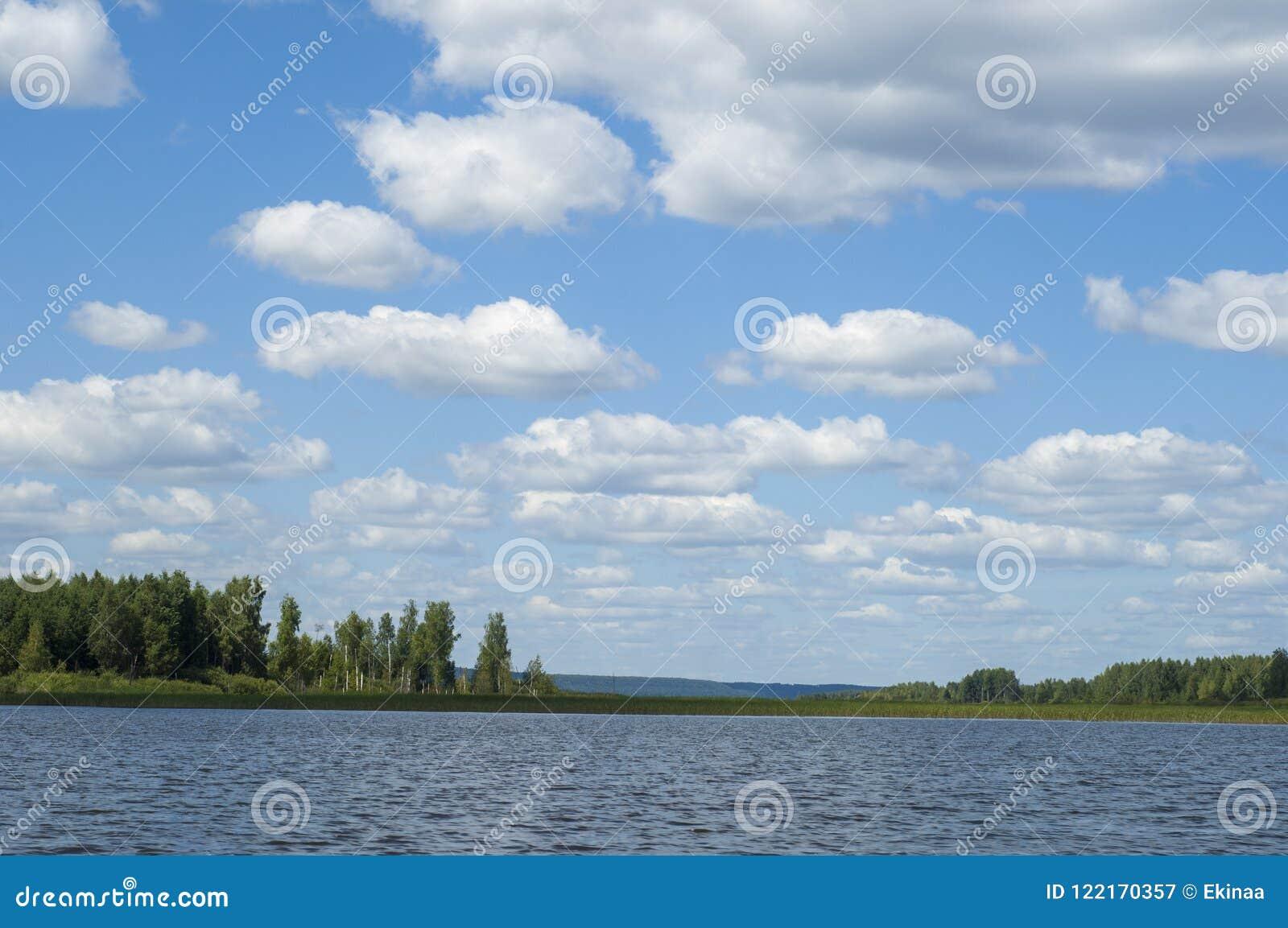 El verano se nubla árboles de las cañas del río