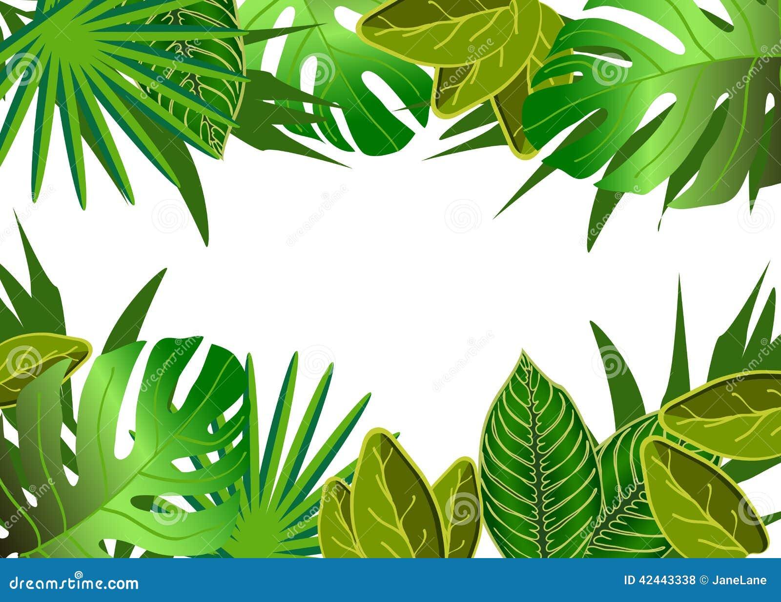 El verde tropical deja el ejemplo