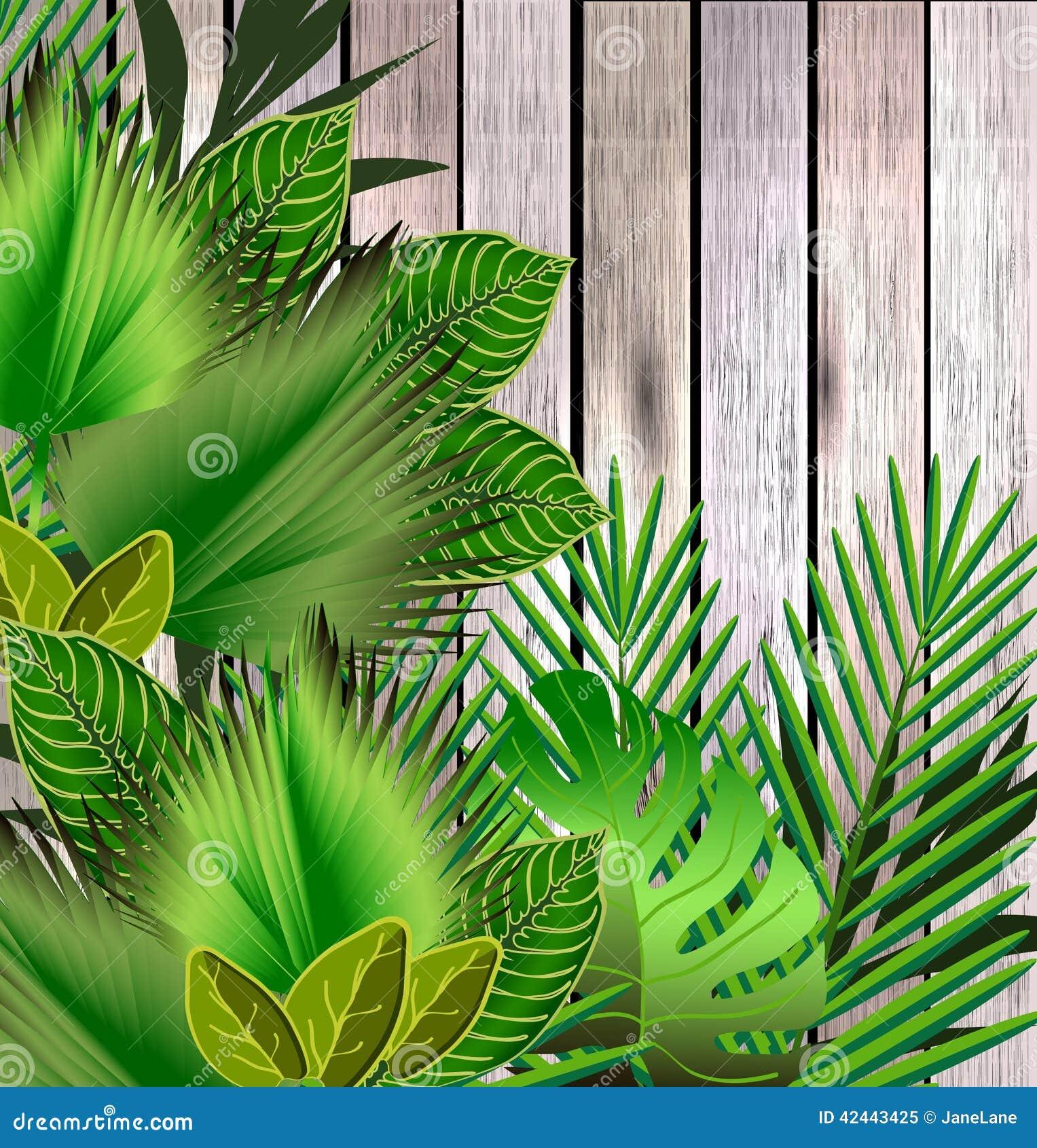 El verde tropical deja el ejemplo sobre la madera