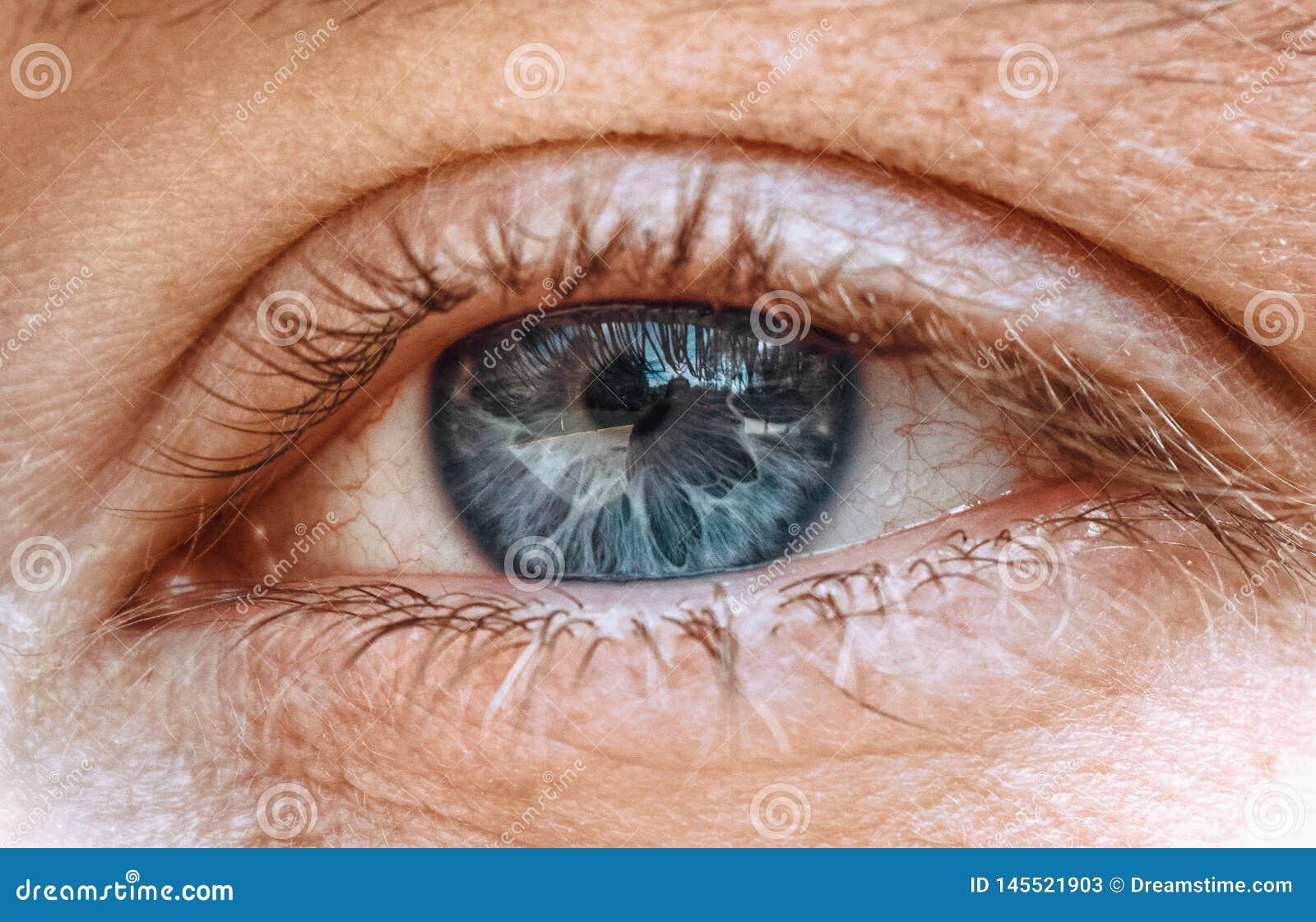 El vetear en el ojo del mundo a continuaci?n