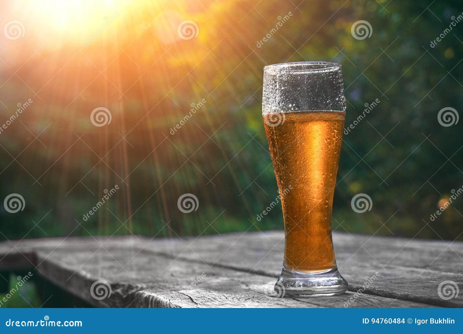 El vidrio de cerveza fría en la tabla de madera en sol irradia en el fondo de la naturaleza Todavía vida en la puesta del sol Hum