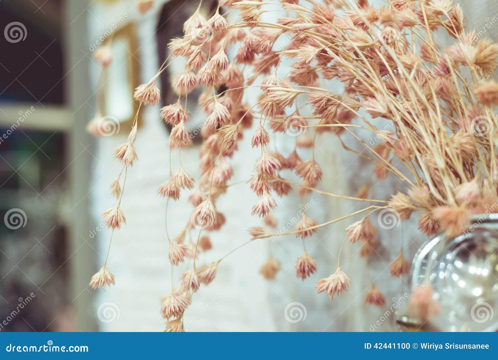 El vintage florece color