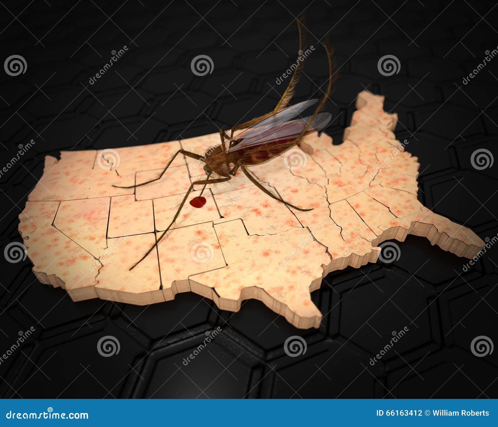 El virus de Zika infecta los Estados Unidos