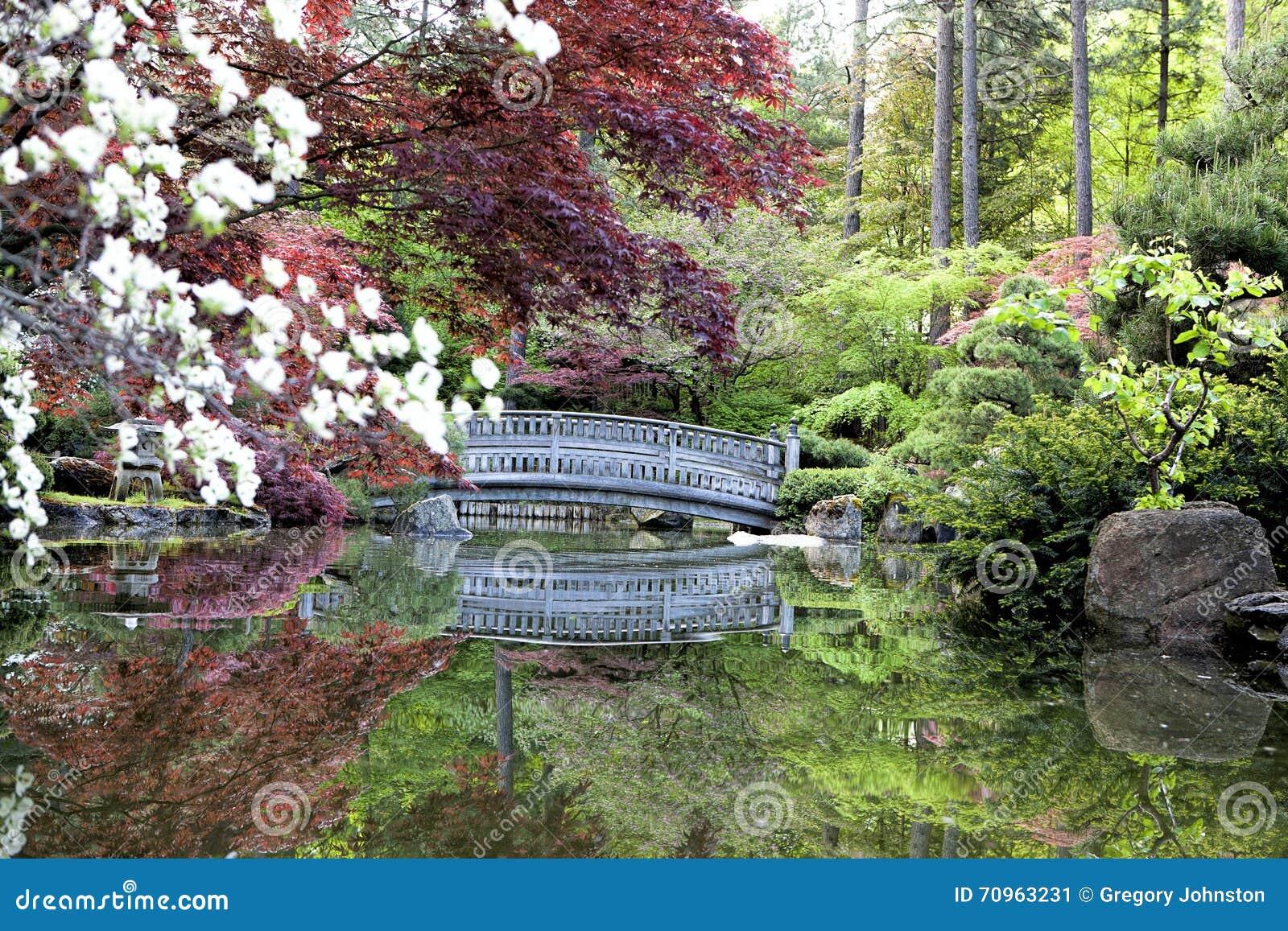 el zen le gusta jardines japoneses imagen de archivo