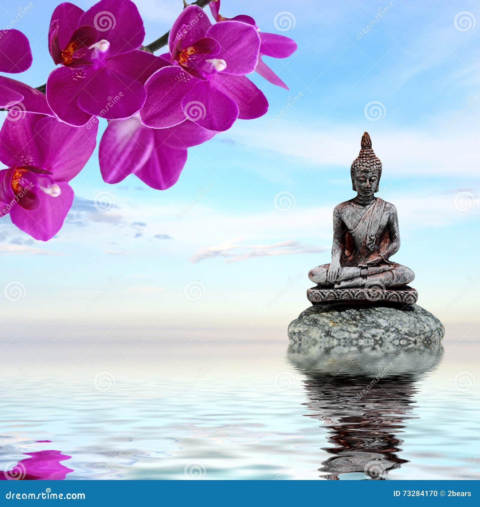 El zen stone las flores de la orqu dea y buda reflejaron for Imagenes zen
