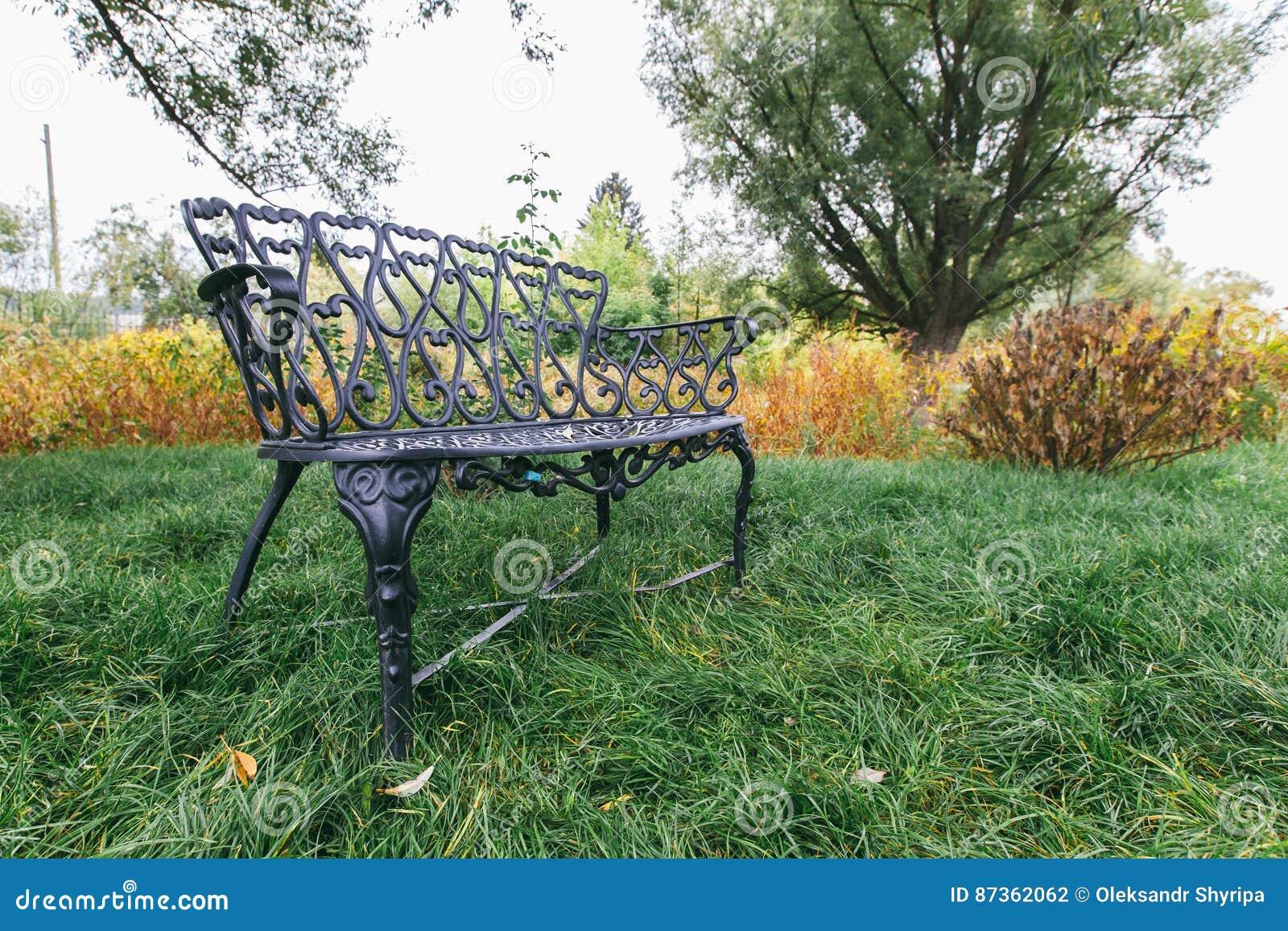 Żelazo ławka