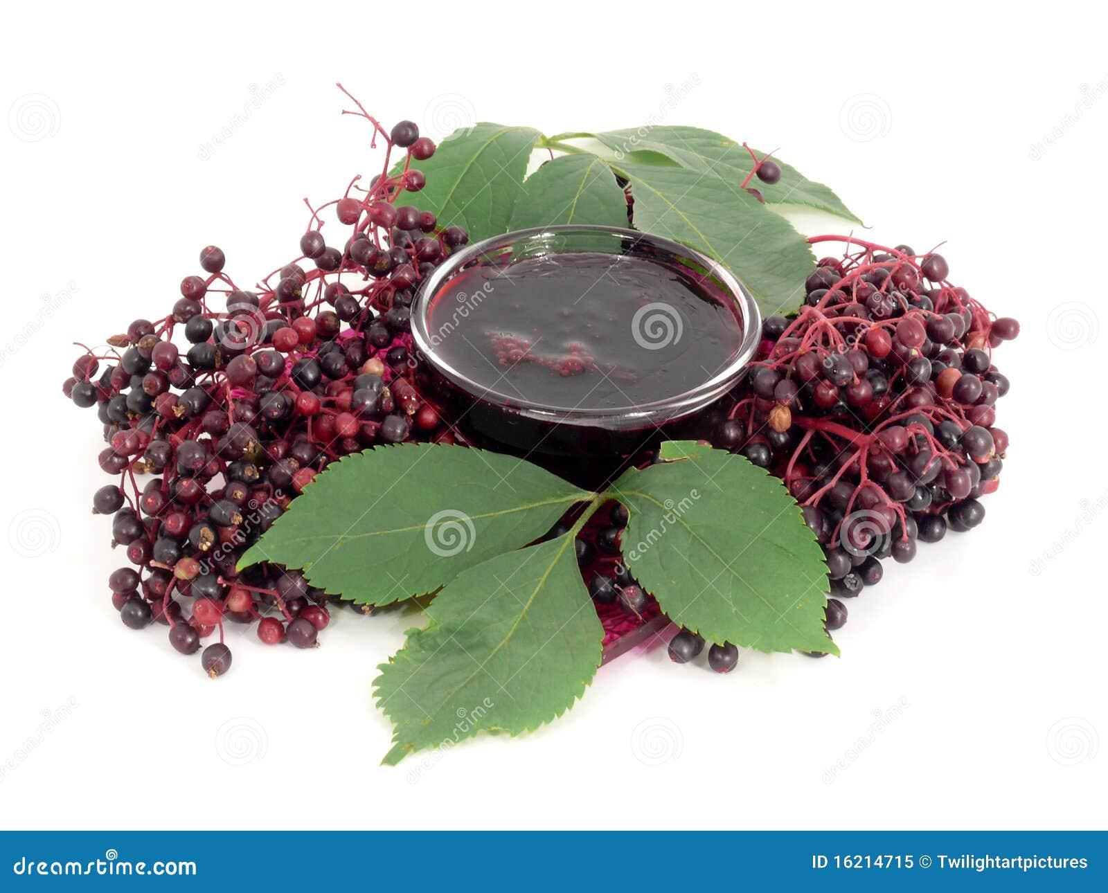 Elderberry Jelly Royalty Free Stock Photo - Image: 16214715