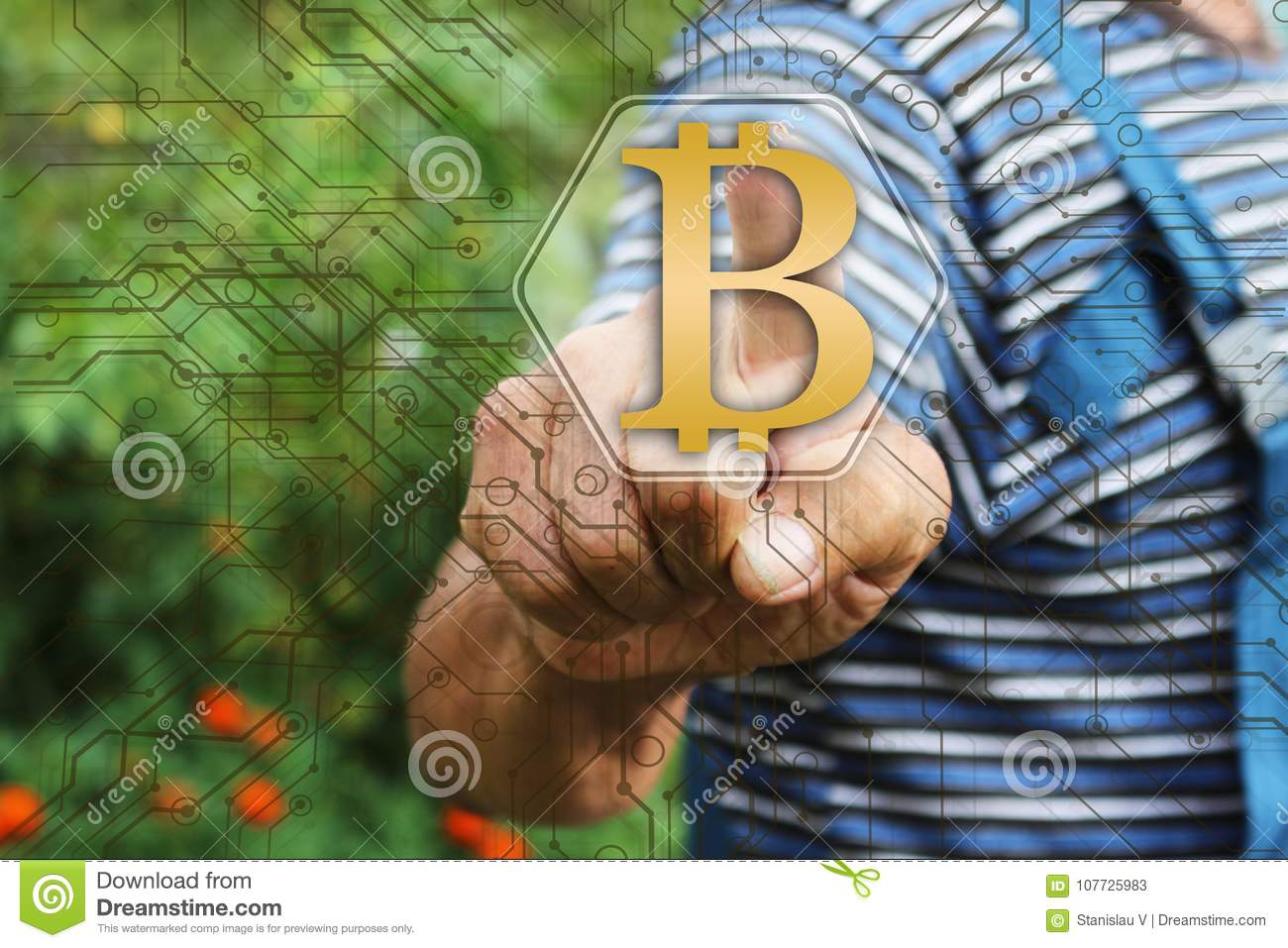 Elderly Businessman choosing bitcoins on the touch screen in the global network. The concept of distribution of bitcoins. Concept