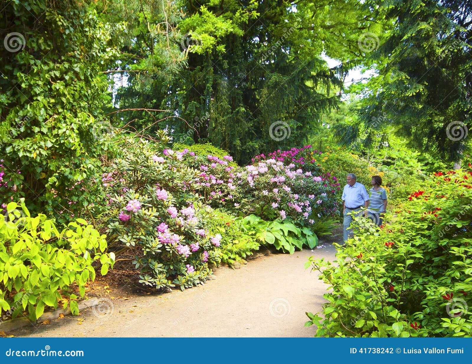 Elderly Couple Take A Walk In Munich Botanical Garden