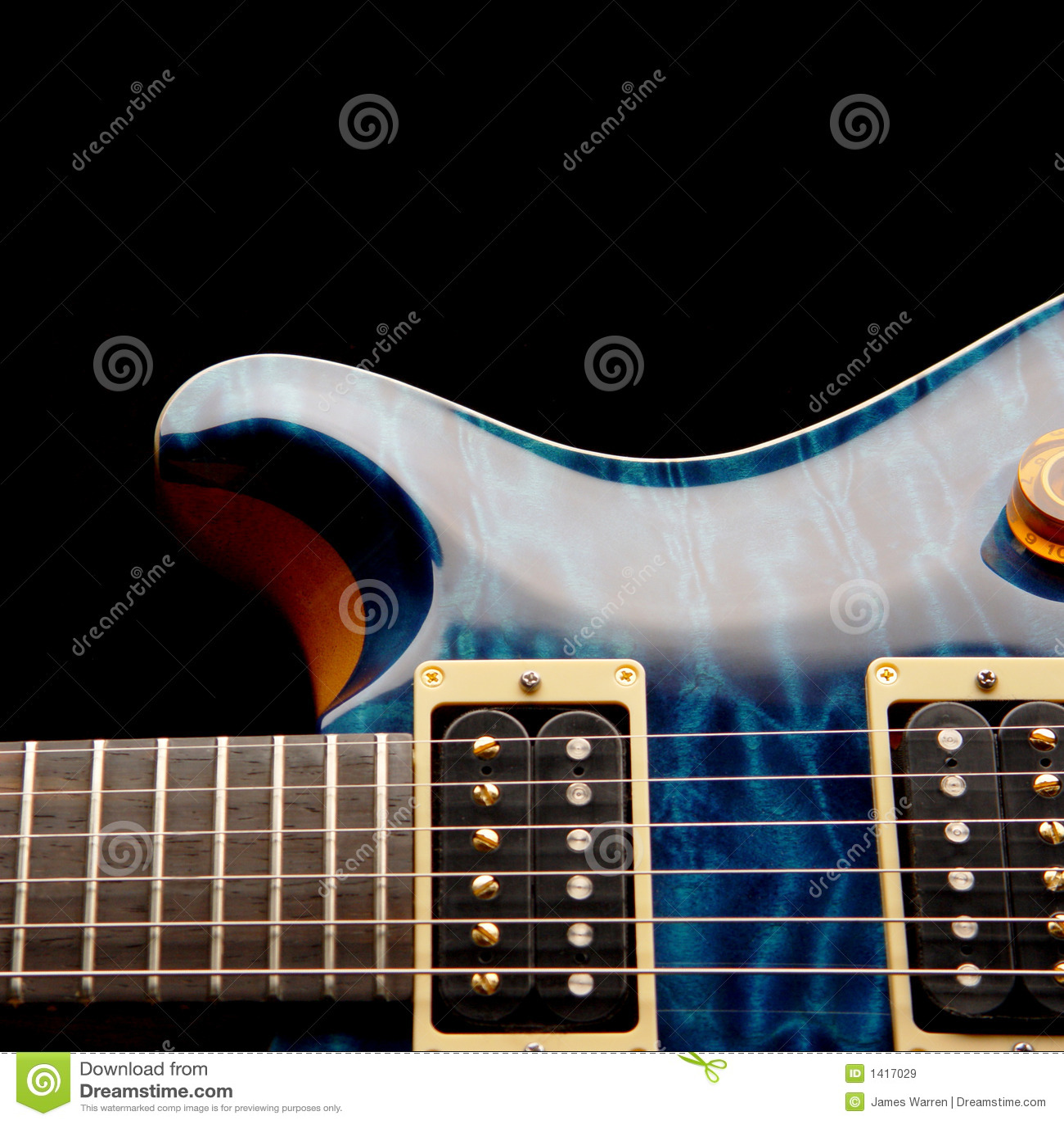 Electric Guitar Body