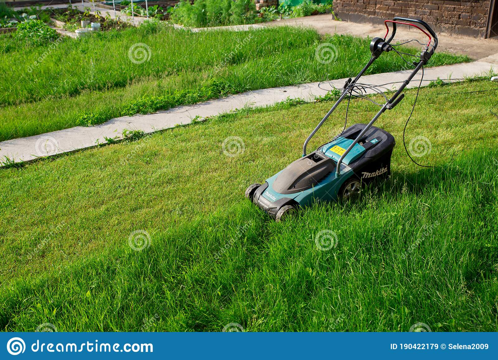 Electric Lawn Mower Makita The Green Lawn Is Mowed With A Lawn Mower A Half Mown Lawn The Concept Of A Beautiful Manicured Lawn Editorial Stock Image Image Of Ground Cutting 190422179