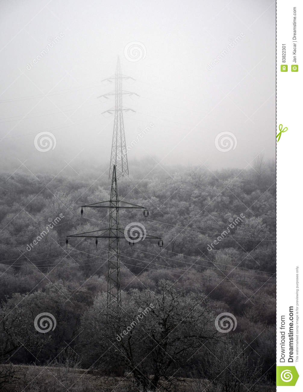 Electric poles in winter